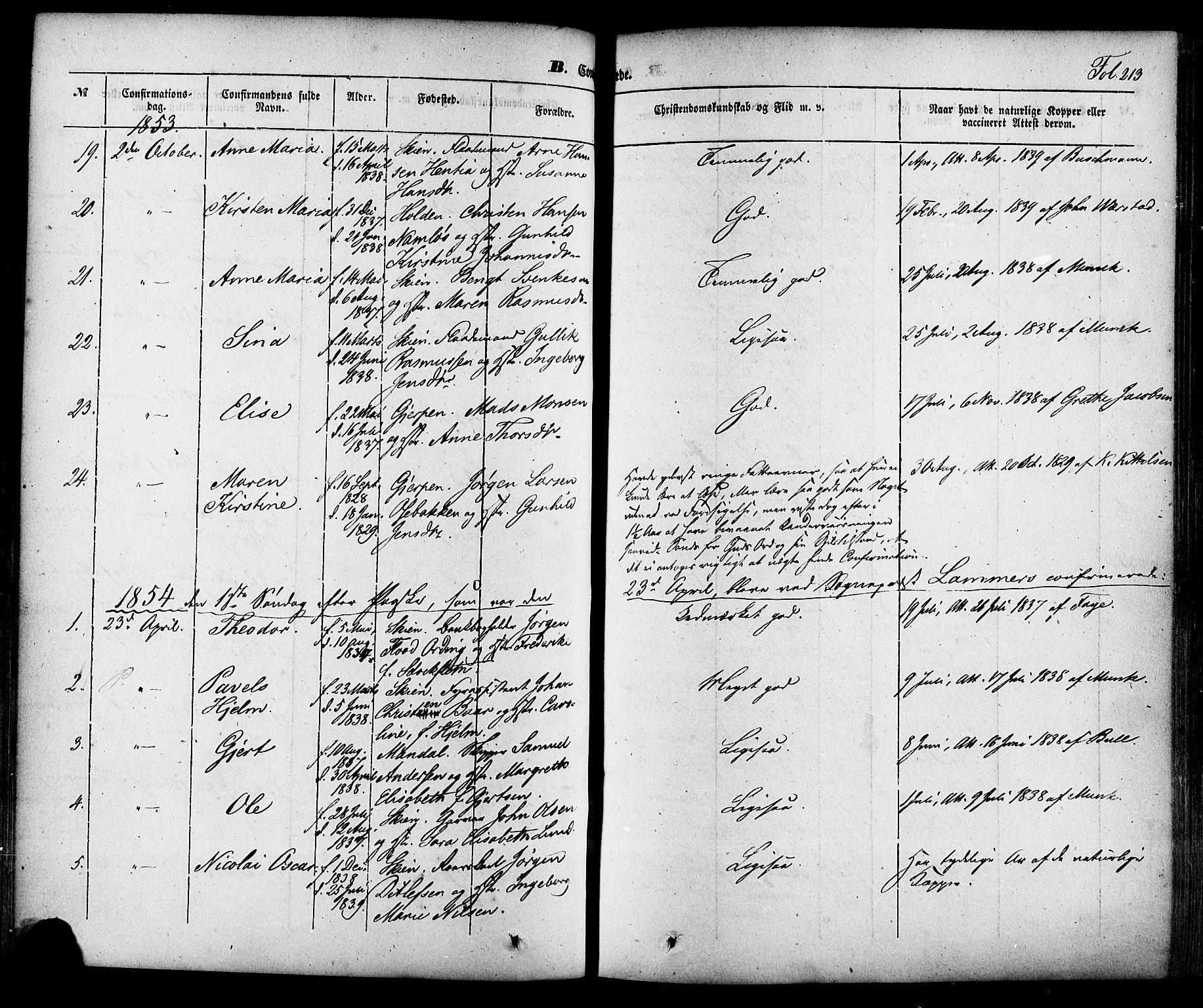 SAKO, Skien kirkebøker, F/Fa/L0006a: Ministerialbok nr. 6A, 1843-1856, s. 213