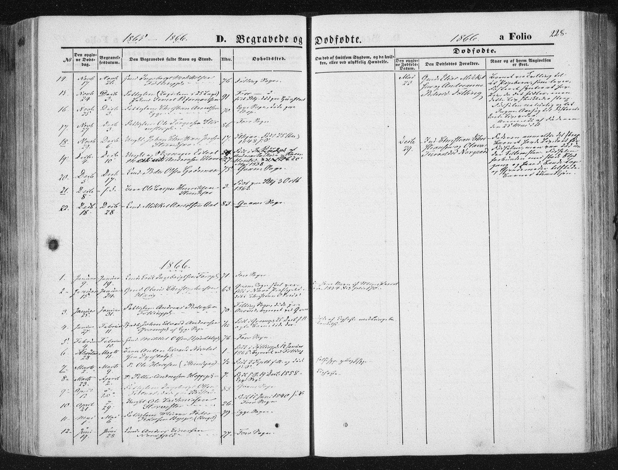 SAT, Ministerialprotokoller, klokkerbøker og fødselsregistre - Nord-Trøndelag, 746/L0447: Ministerialbok nr. 746A06, 1860-1877, s. 228