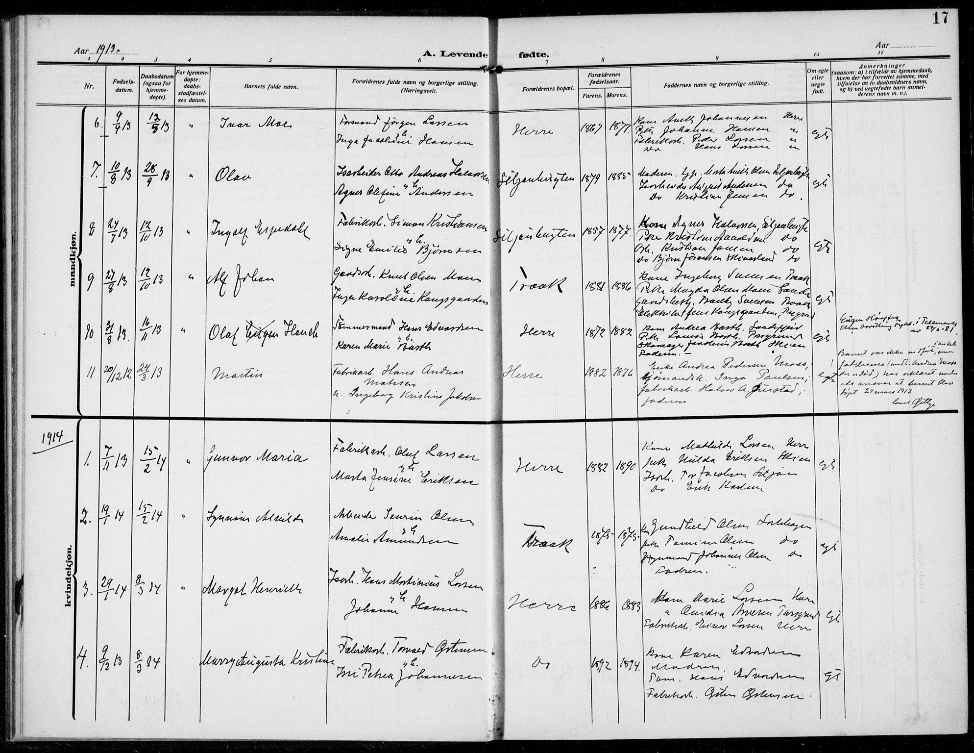 SAKO, Bamble kirkebøker, F/Fc/L0001: Ministerialbok nr. III 1, 1909-1916, s. 17