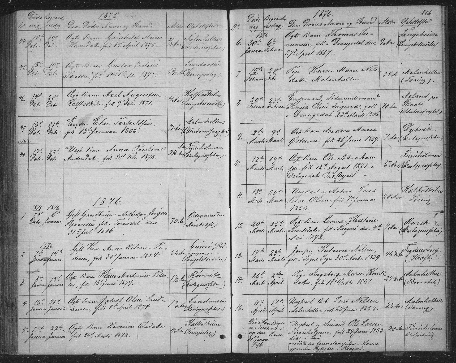 SAKO, Skåtøy kirkebøker, G/Ga/L0002: Klokkerbok nr. I 2, 1872-1884, s. 206