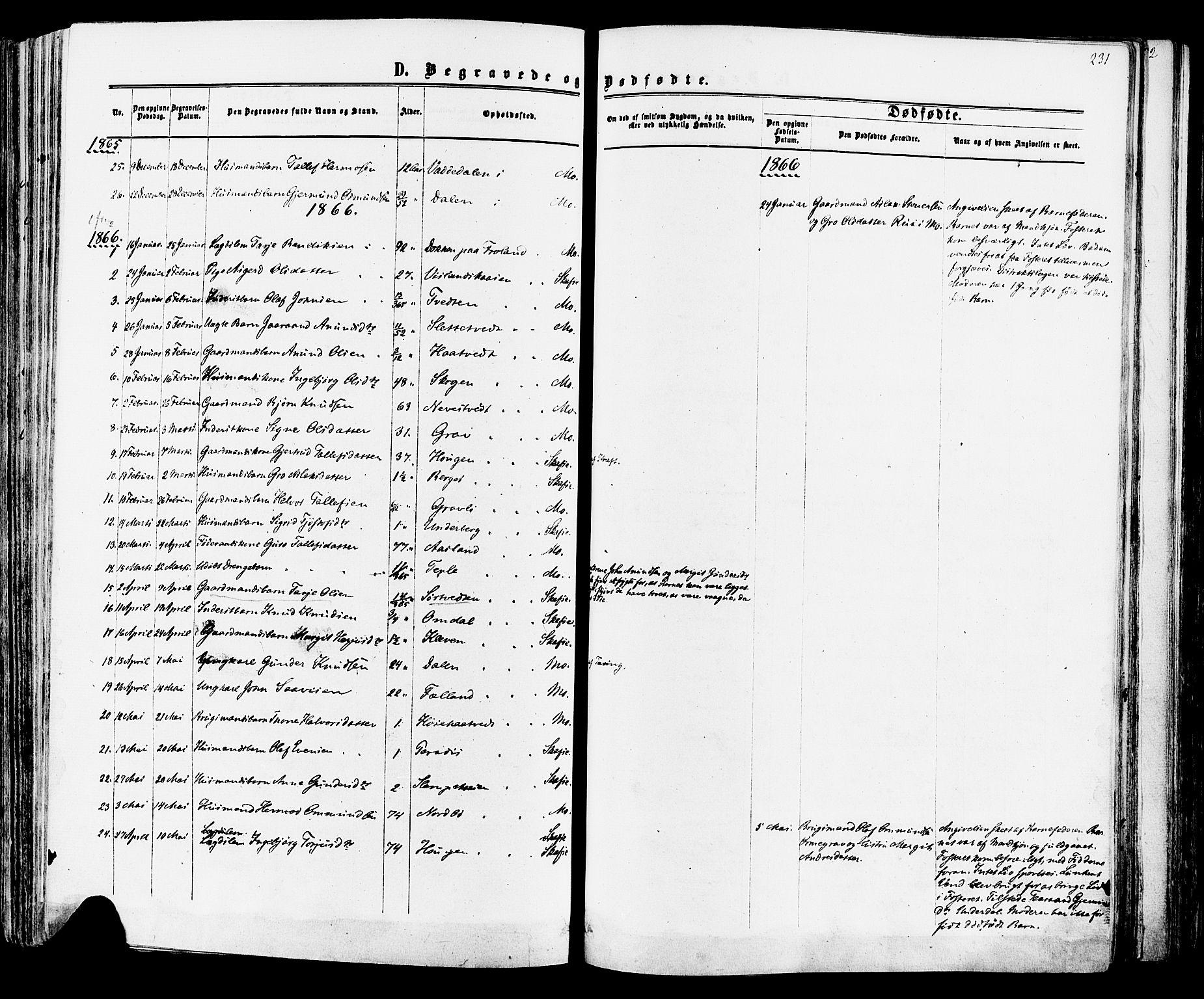 SAKO, Mo kirkebøker, F/Fa/L0006: Ministerialbok nr. I 6, 1865-1885, s. 231