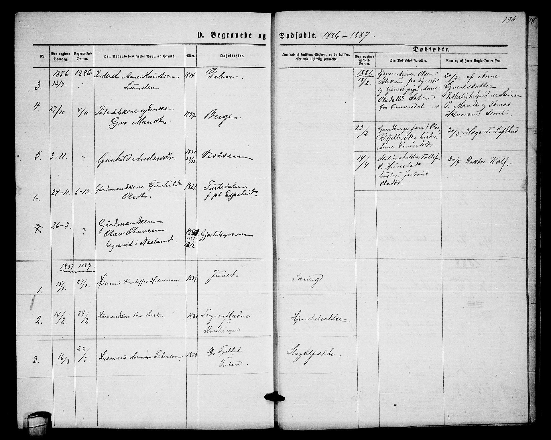 SAKO, Lårdal kirkebøker, G/Gb/L0002: Klokkerbok nr. II 2, 1865-1888, s. 196