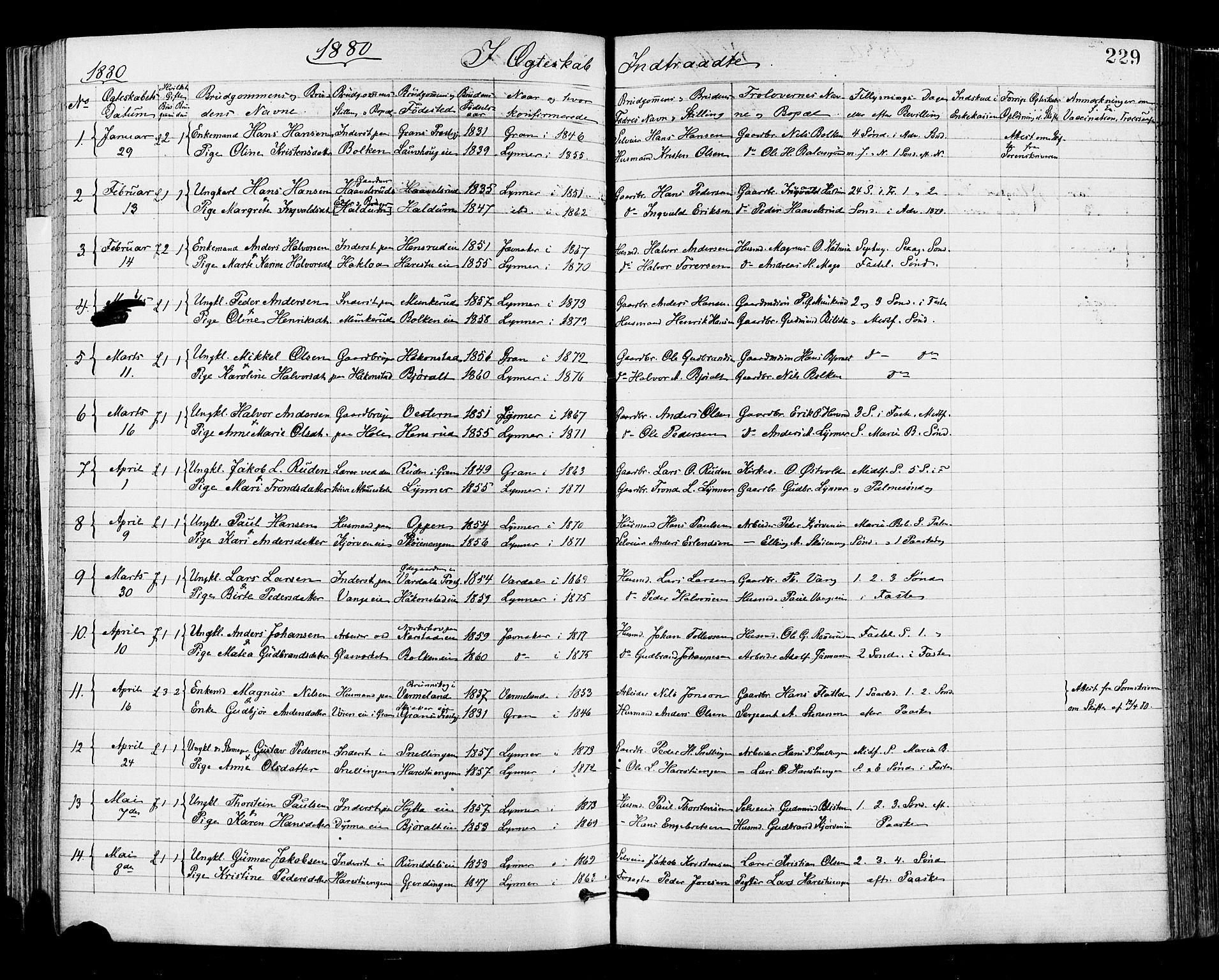 SAH, Jevnaker prestekontor, Ministerialbok nr. 8, 1877-1890, s. 229