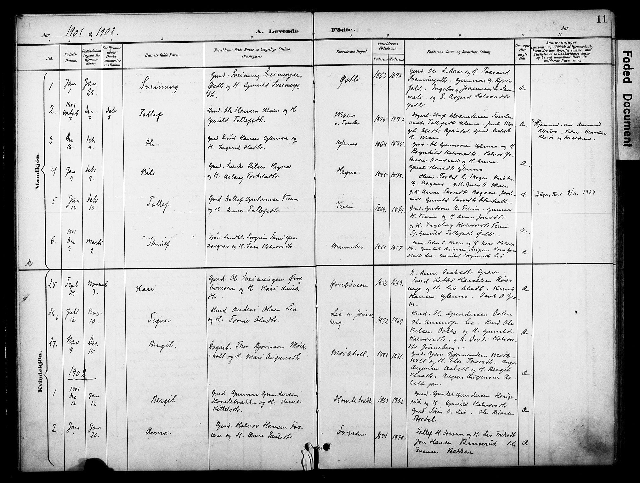 SAKO, Bø kirkebøker, F/Fa/L0012: Ministerialbok nr. 12, 1900-1908, s. 11