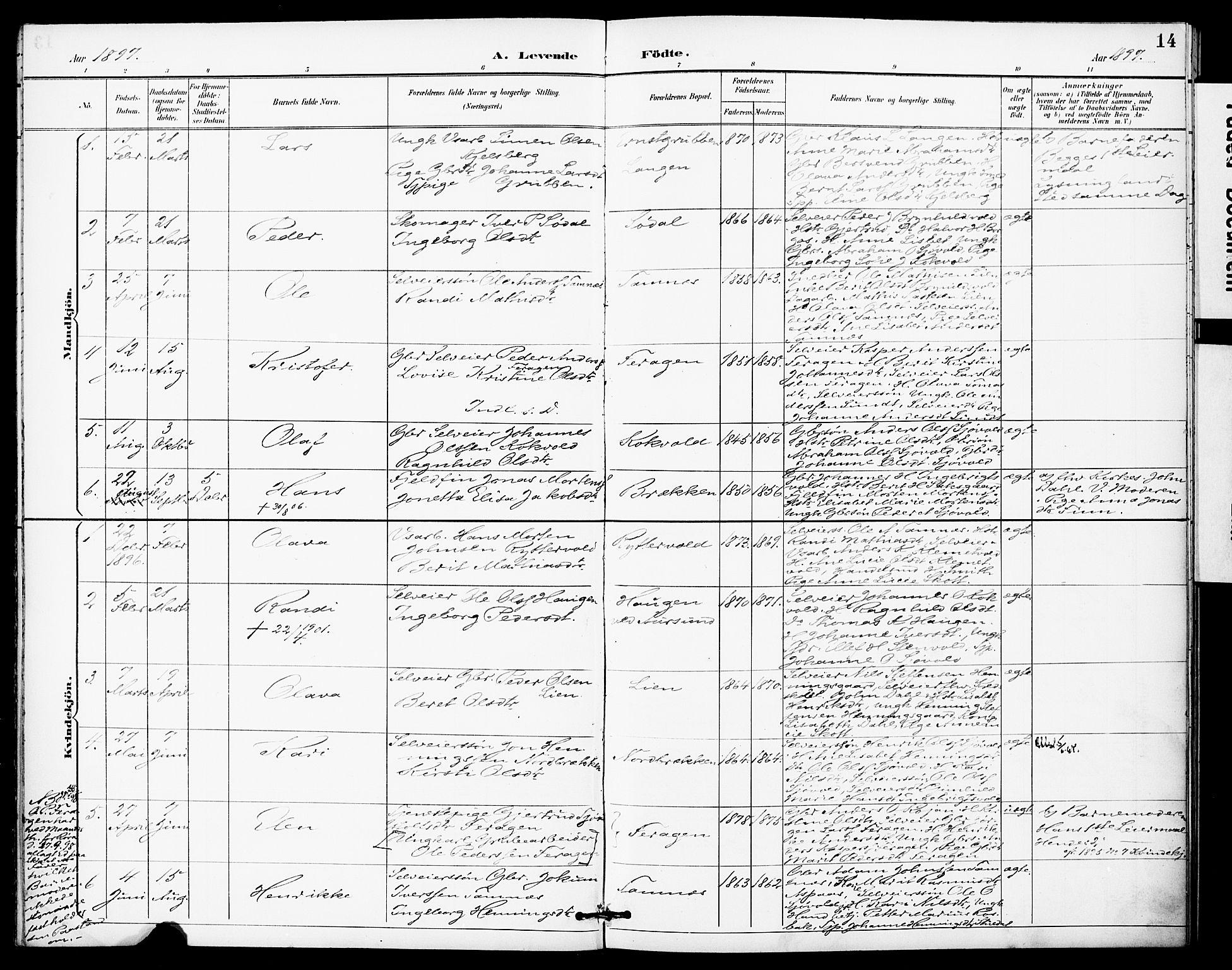 SAT, Ministerialprotokoller, klokkerbøker og fødselsregistre - Sør-Trøndelag, 683/L0948: Ministerialbok nr. 683A01, 1891-1902, s. 14