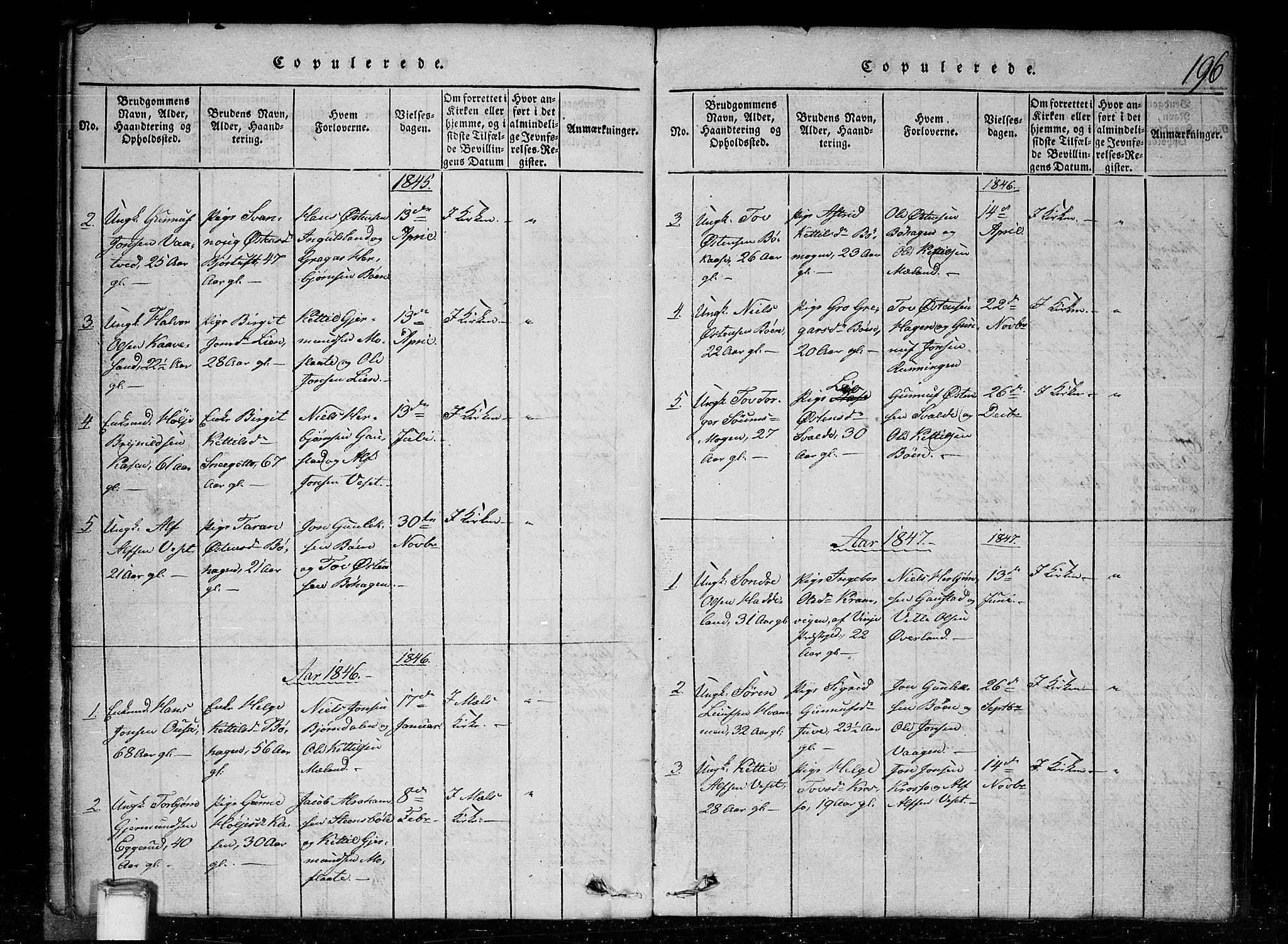 SAKO, Tinn kirkebøker, G/Gc/L0001: Klokkerbok nr. III 1, 1815-1879, s. 196
