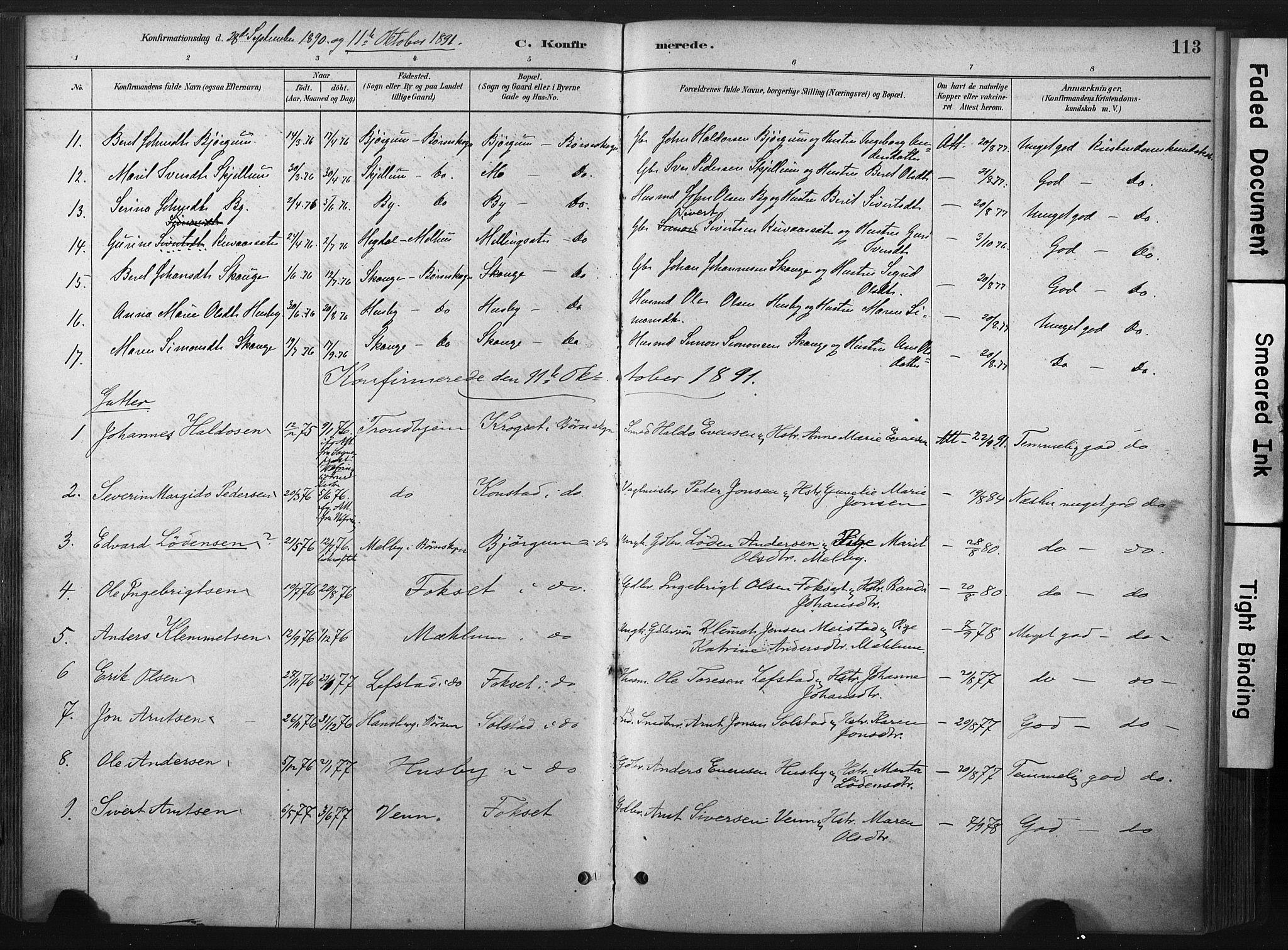 SAT, Ministerialprotokoller, klokkerbøker og fødselsregistre - Sør-Trøndelag, 667/L0795: Ministerialbok nr. 667A03, 1879-1907, s. 113