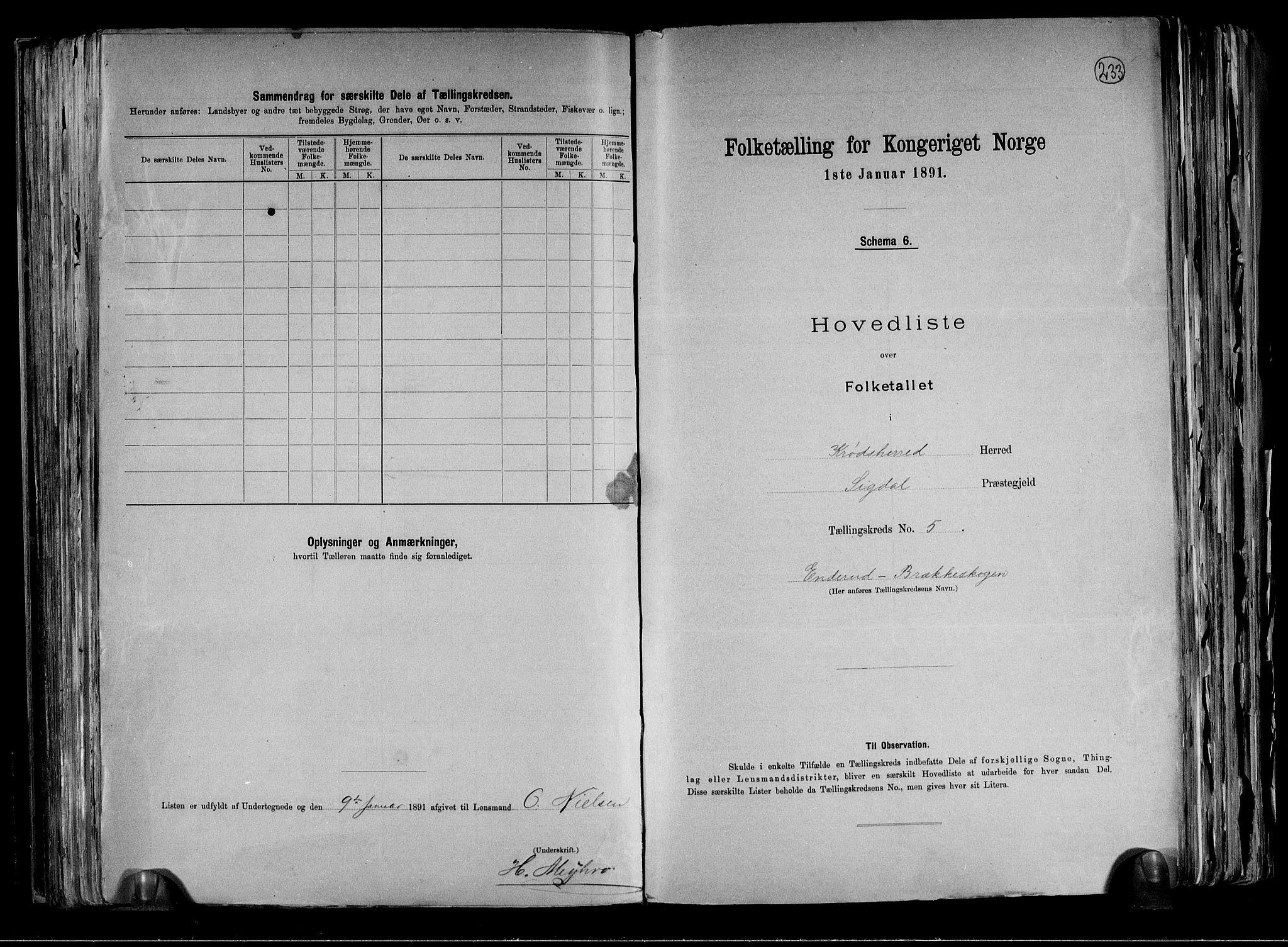 RA, Folketelling 1891 for 0621 Sigdal herred, 1891, s. 46