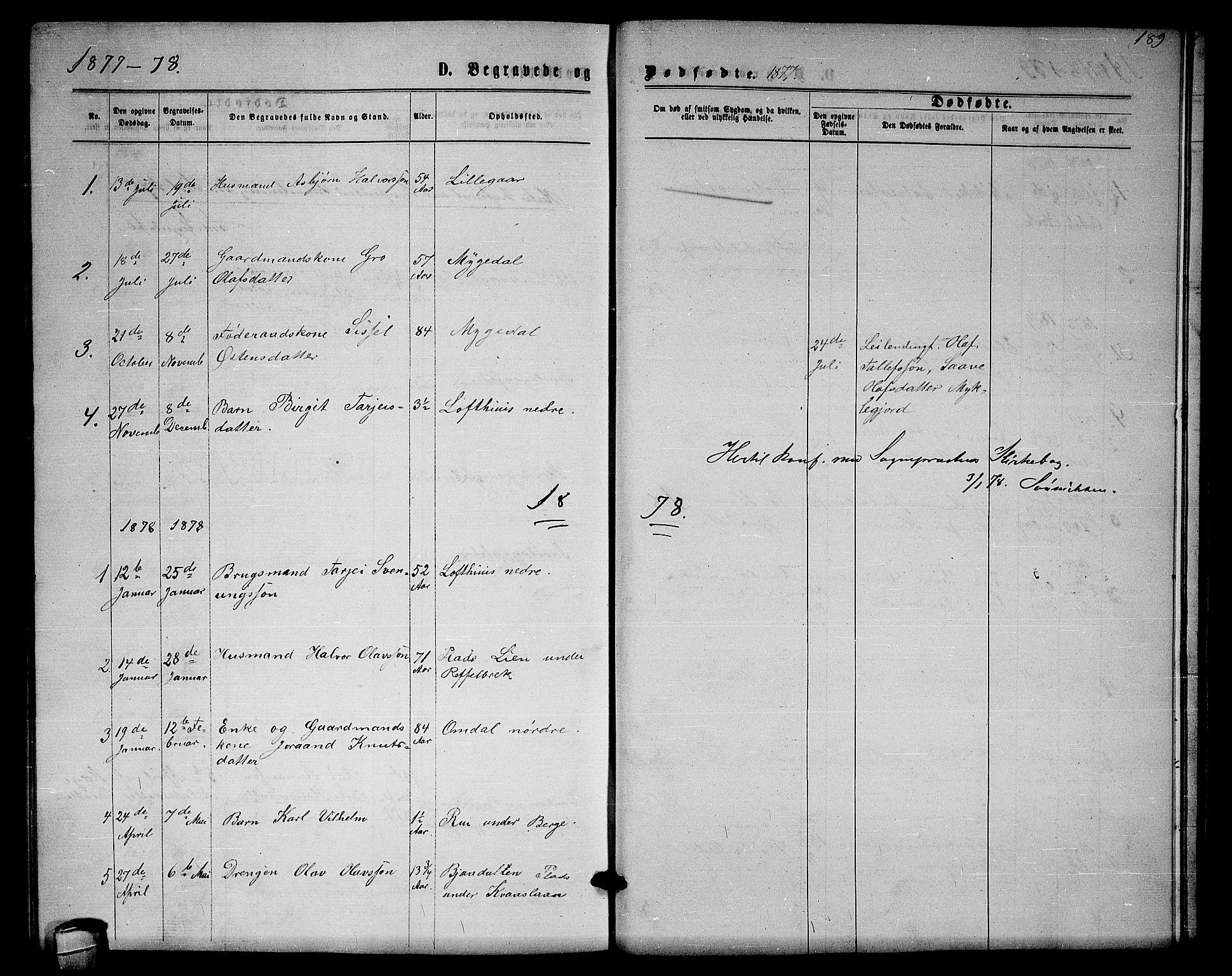SAKO, Lårdal kirkebøker, G/Gb/L0002: Klokkerbok nr. II 2, 1865-1888, s. 189