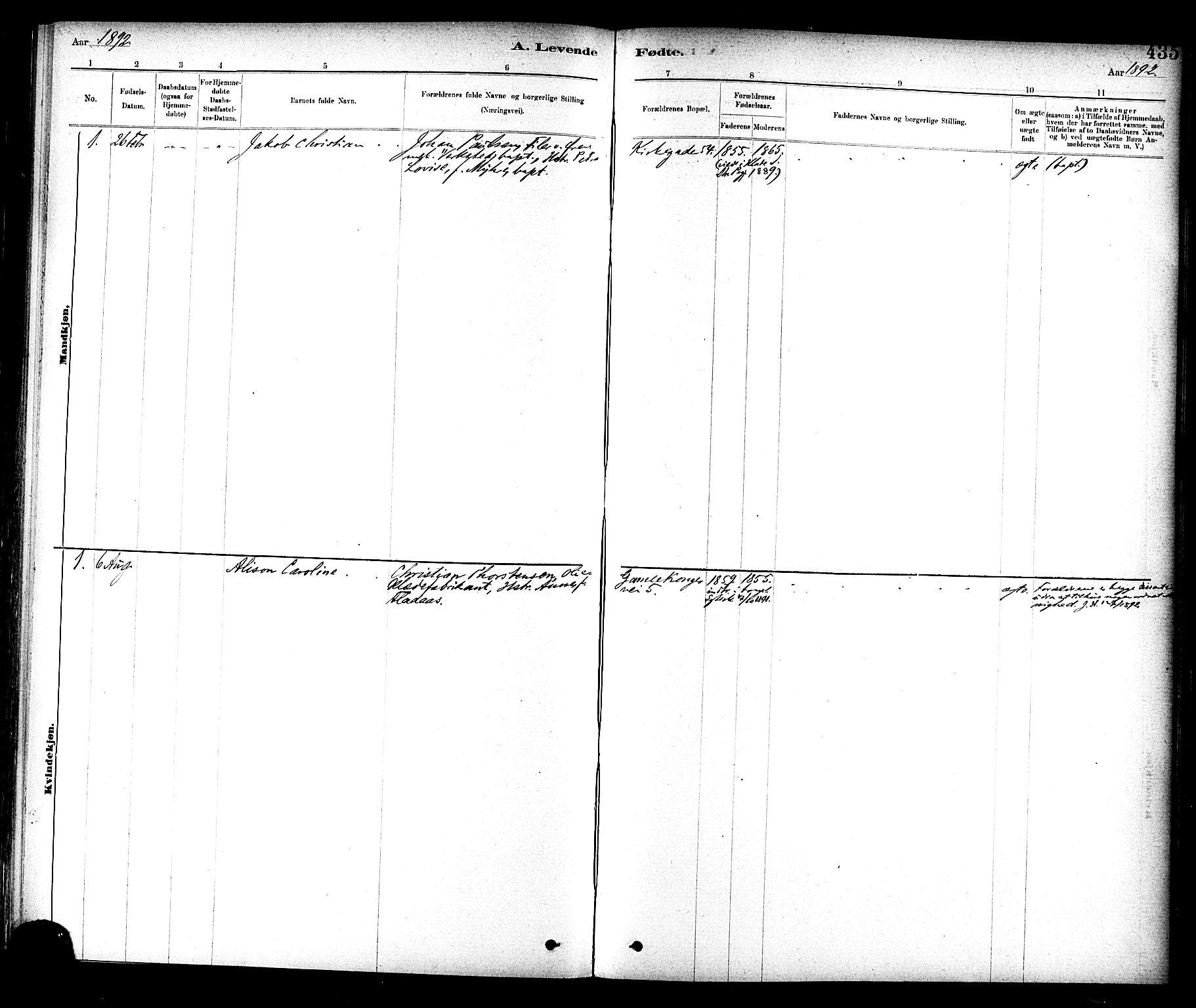 SAT, Ministerialprotokoller, klokkerbøker og fødselsregistre - Sør-Trøndelag, 604/L0188: Ministerialbok nr. 604A09, 1878-1892, s. 435