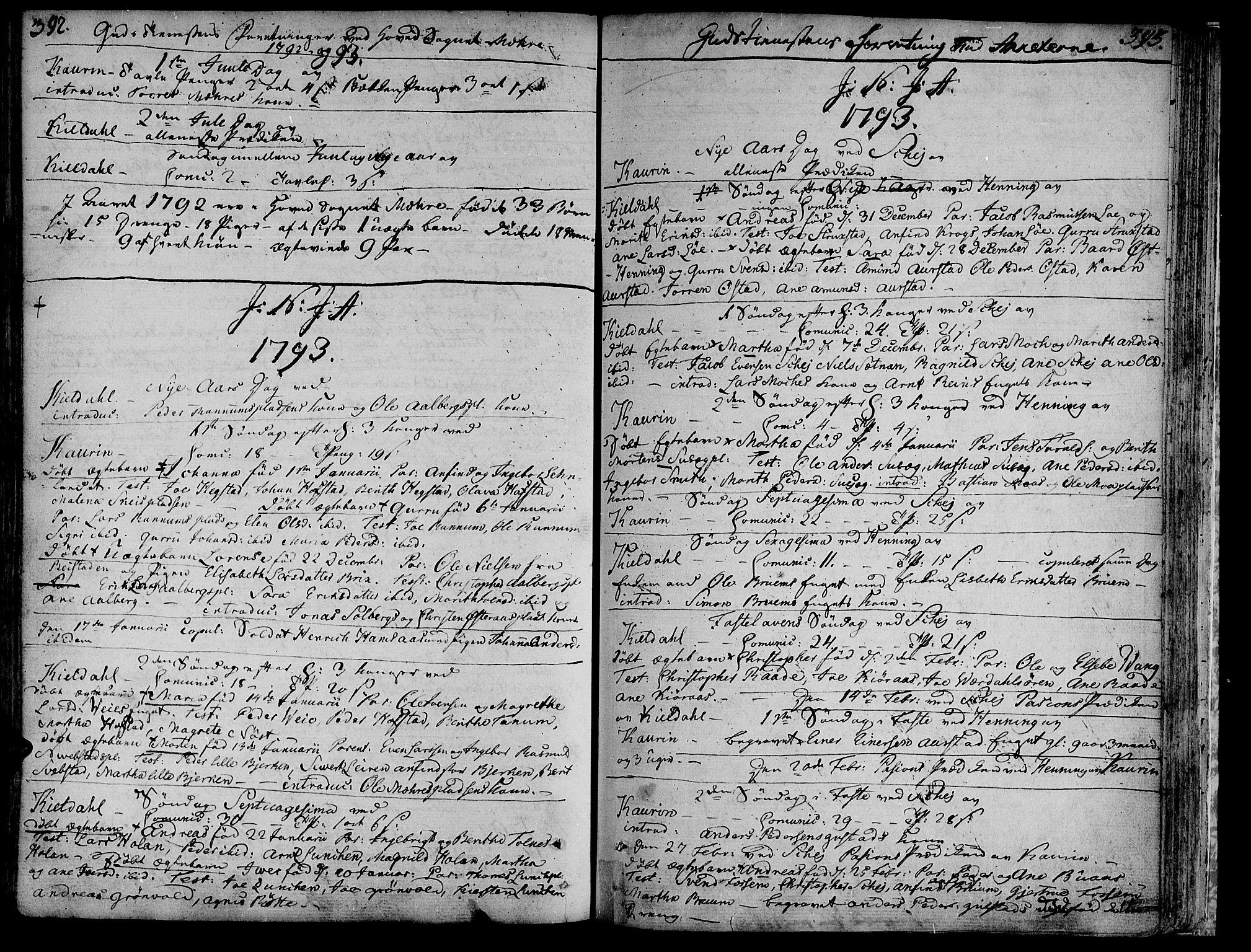 SAT, Ministerialprotokoller, klokkerbøker og fødselsregistre - Nord-Trøndelag, 735/L0331: Ministerialbok nr. 735A02, 1762-1794, s. 392-393