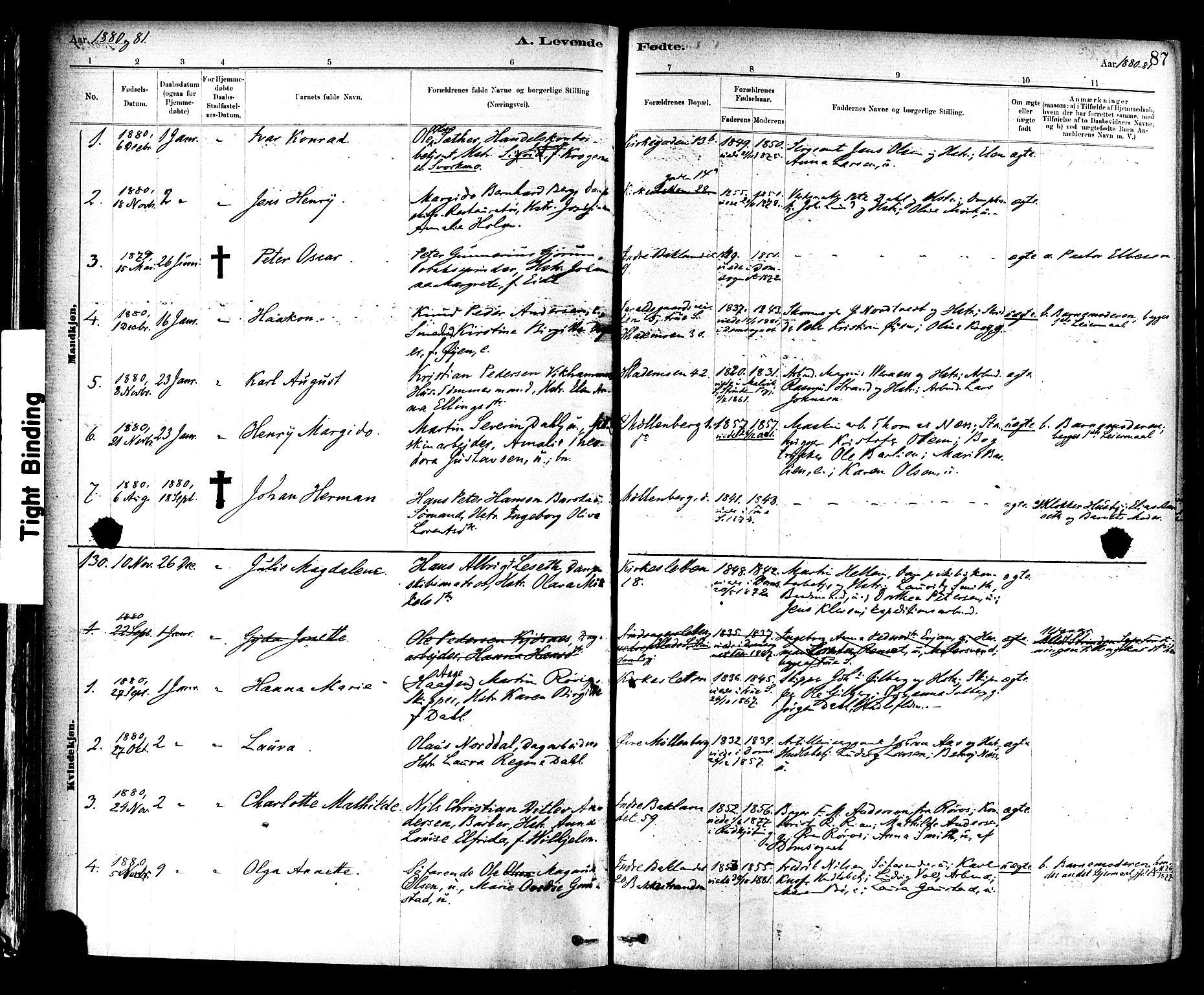SAT, Ministerialprotokoller, klokkerbøker og fødselsregistre - Sør-Trøndelag, 604/L0188: Ministerialbok nr. 604A09, 1878-1892, s. 87