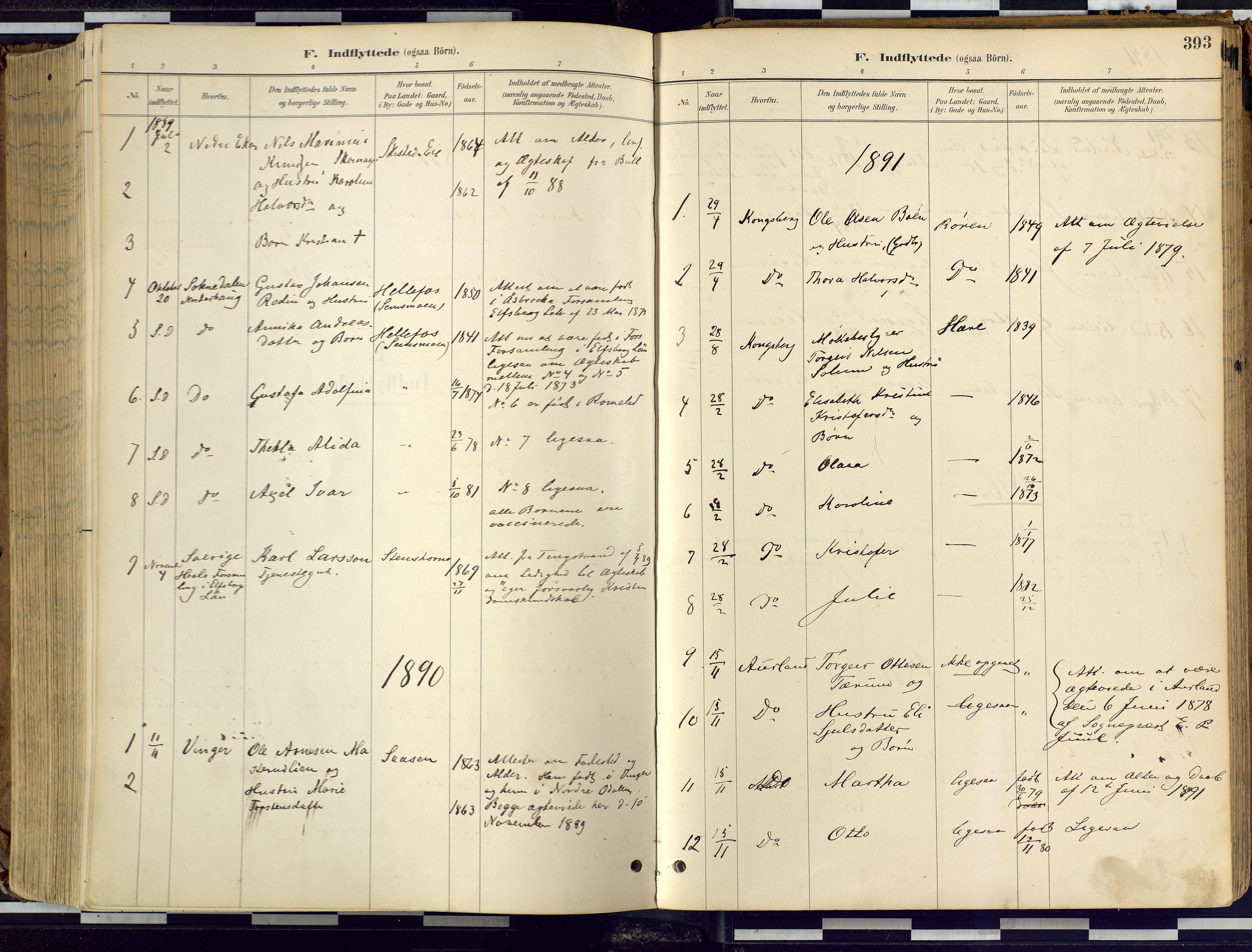 SAKO, Eiker kirkebøker, F/Fb/L0002: Ministerialbok nr. II 2, 1889-1896, s. 393