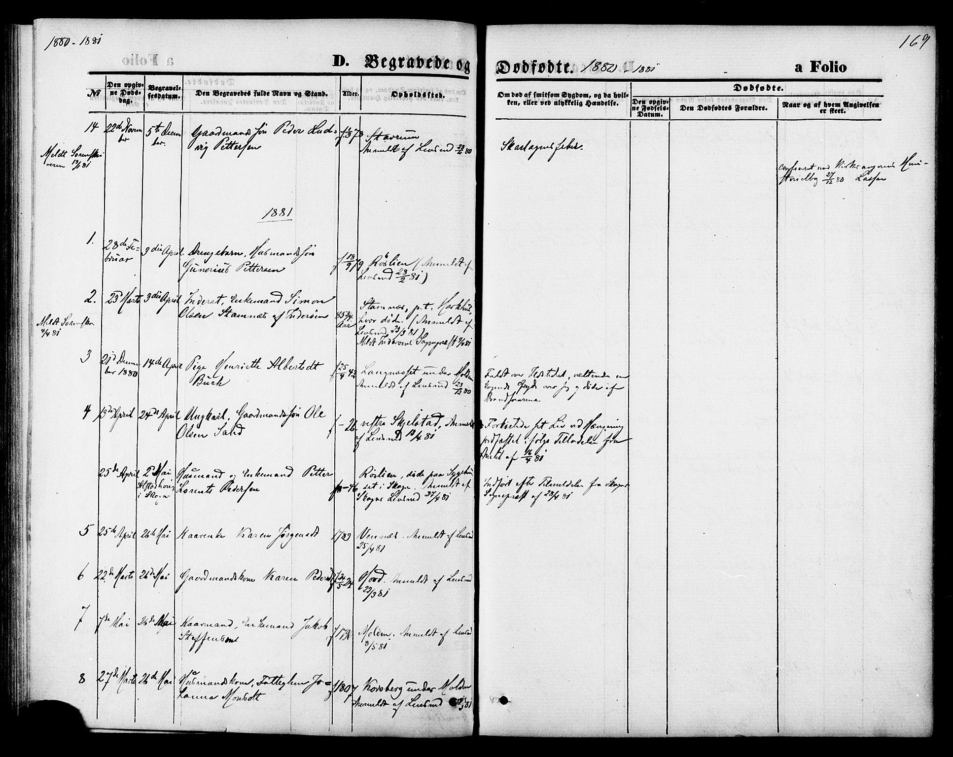 SAT, Ministerialprotokoller, klokkerbøker og fødselsregistre - Nord-Trøndelag, 744/L0419: Ministerialbok nr. 744A03, 1867-1881, s. 169
