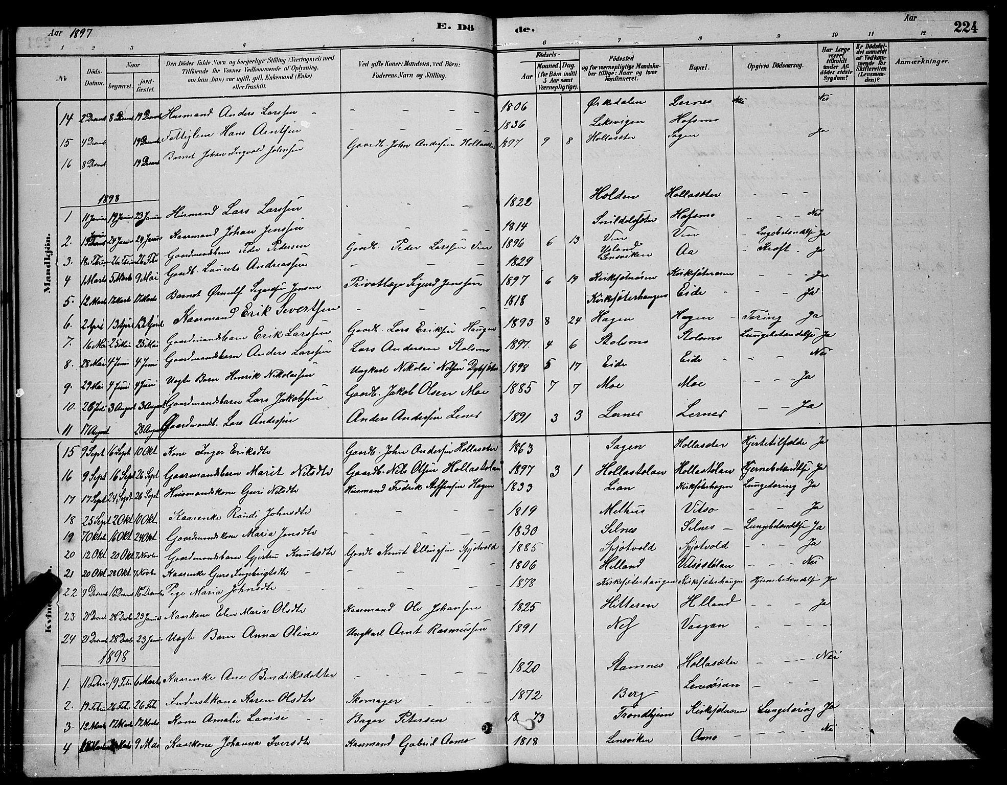 SAT, Ministerialprotokoller, klokkerbøker og fødselsregistre - Sør-Trøndelag, 630/L0504: Klokkerbok nr. 630C02, 1879-1898, s. 224