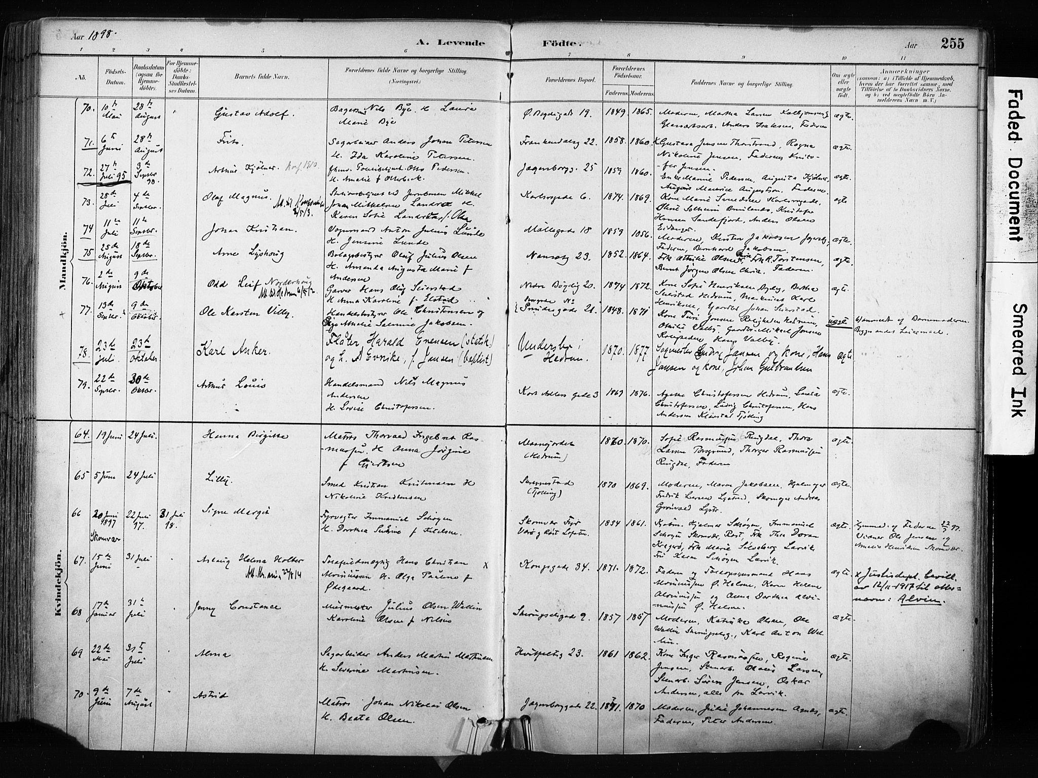 SAKO, Larvik kirkebøker, F/Fa/L0009: Ministerialbok nr. I 9, 1884-1904, s. 255