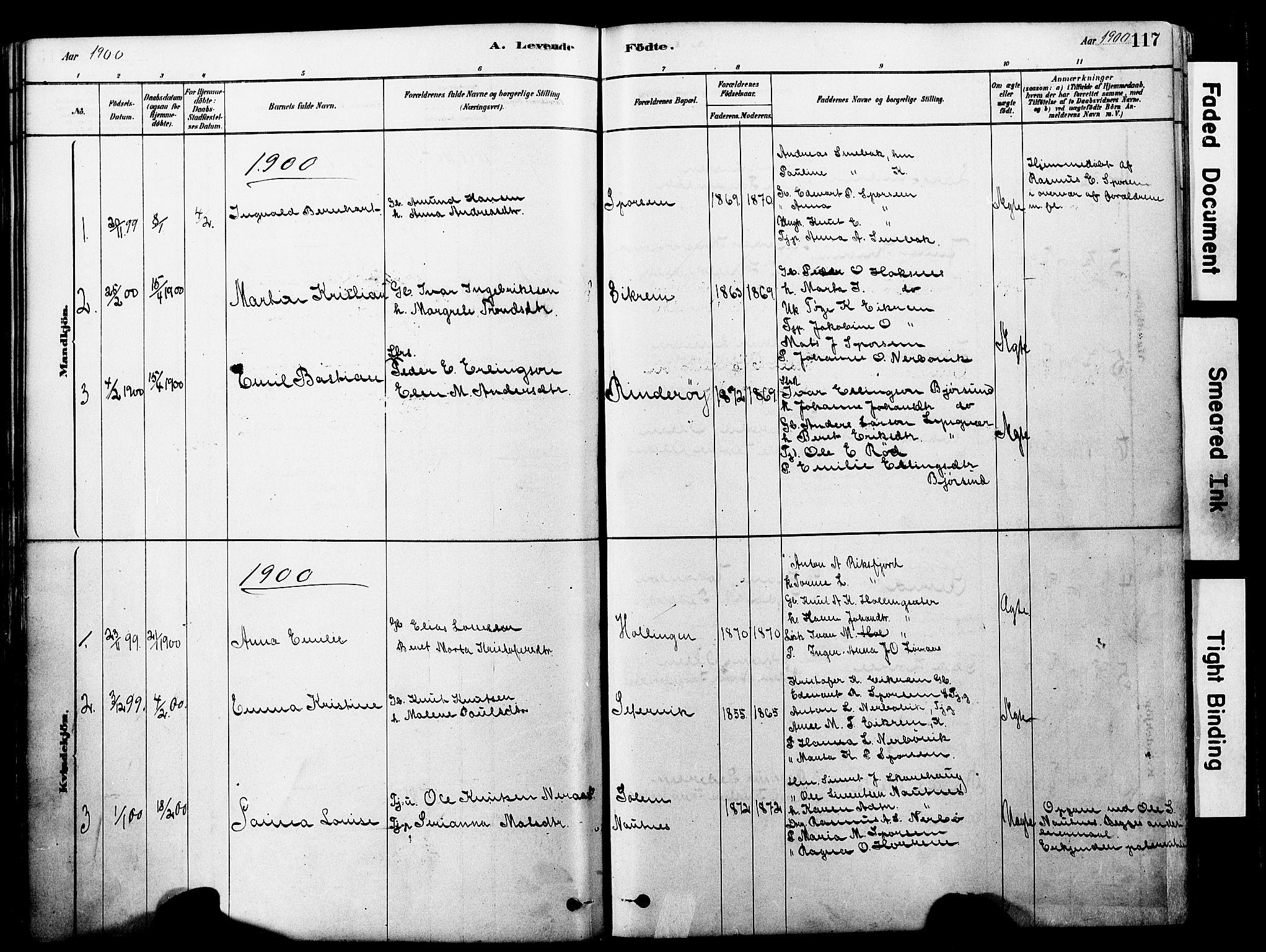 SAT, Ministerialprotokoller, klokkerbøker og fødselsregistre - Møre og Romsdal, 560/L0721: Ministerialbok nr. 560A05, 1878-1917, s. 117