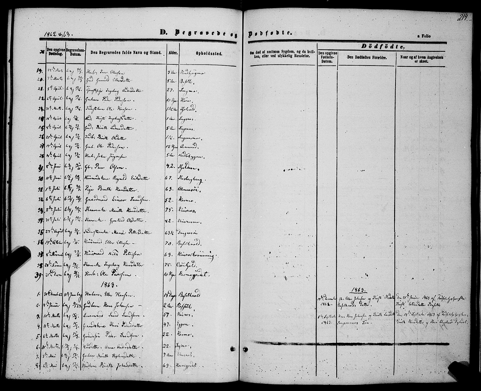 SAT, Ministerialprotokoller, klokkerbøker og fødselsregistre - Sør-Trøndelag, 685/L0967: Ministerialbok nr. 685A07 /2, 1860-1869, s. 214