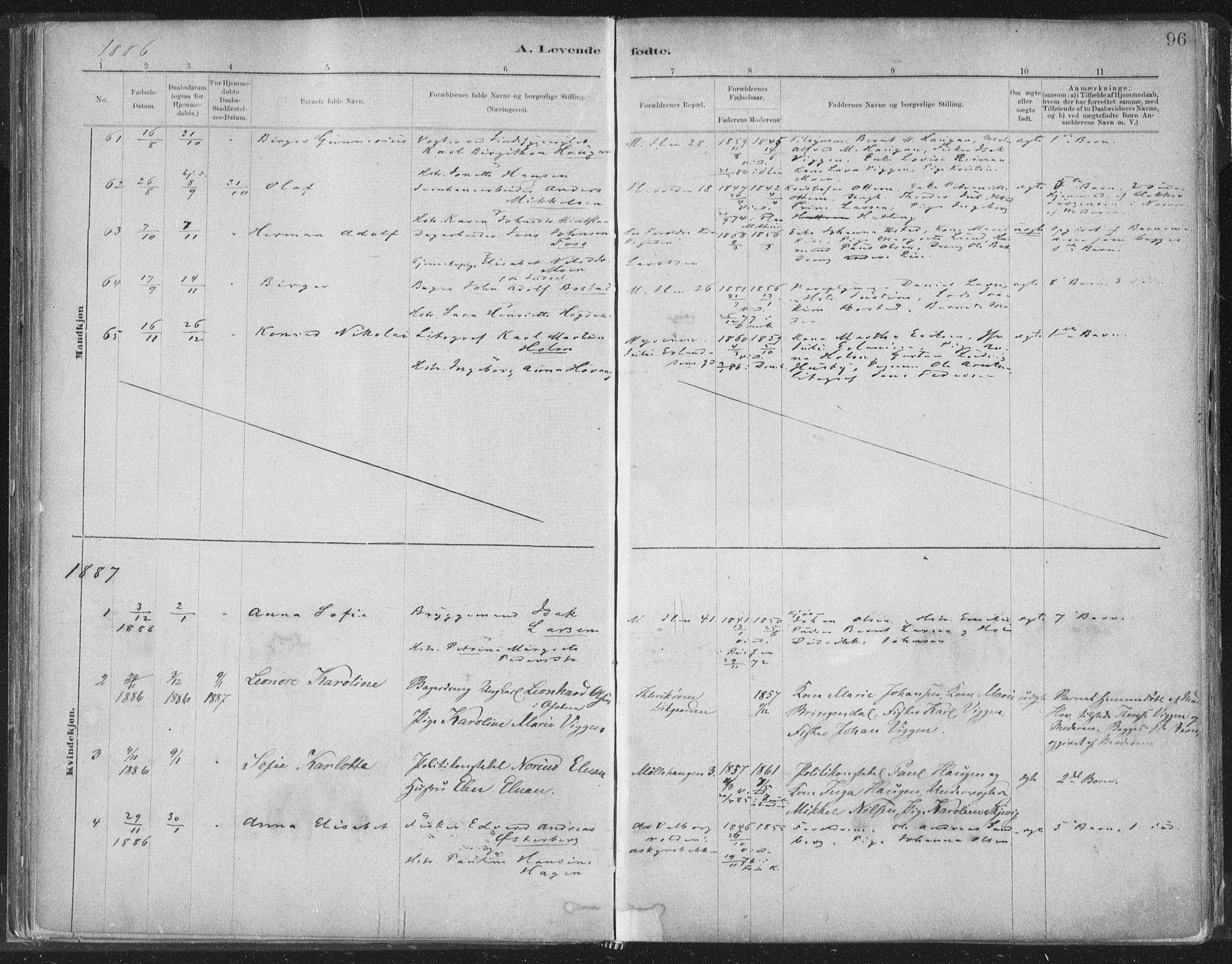 SAT, Ministerialprotokoller, klokkerbøker og fødselsregistre - Sør-Trøndelag, 603/L0162: Ministerialbok nr. 603A01, 1879-1895, s. 96