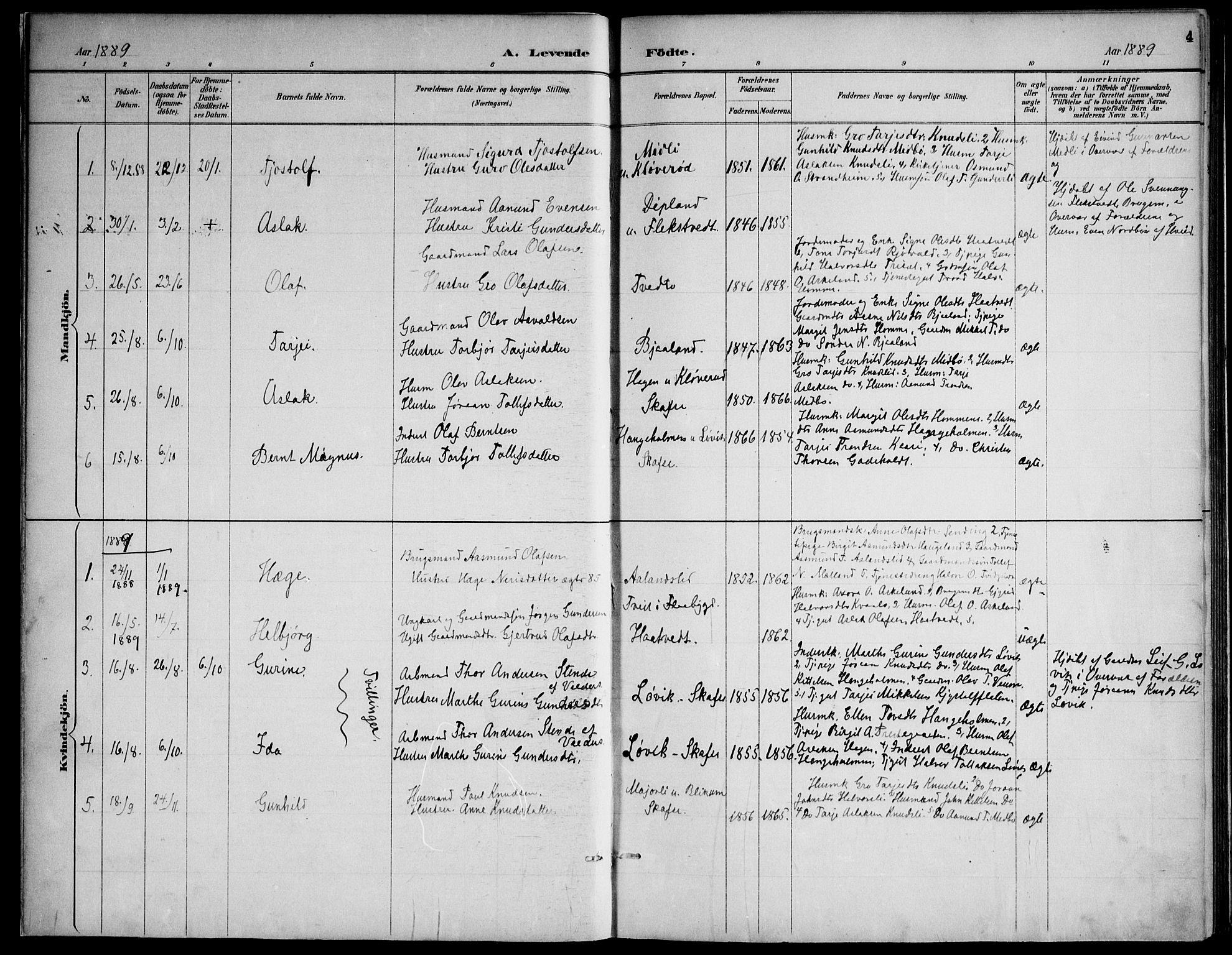 SAKO, Lårdal kirkebøker, F/Fa/L0007: Ministerialbok nr. I 7, 1887-1906, s. 4