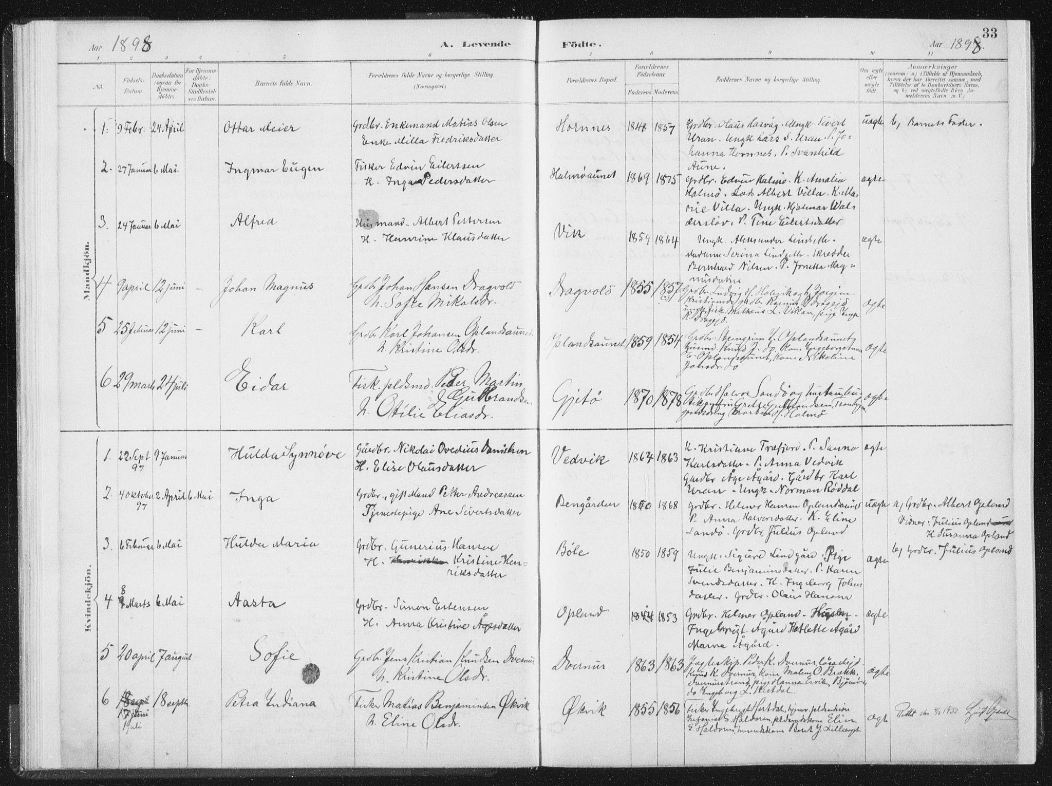 SAT, Ministerialprotokoller, klokkerbøker og fødselsregistre - Nord-Trøndelag, 771/L0597: Ministerialbok nr. 771A04, 1885-1910, s. 33