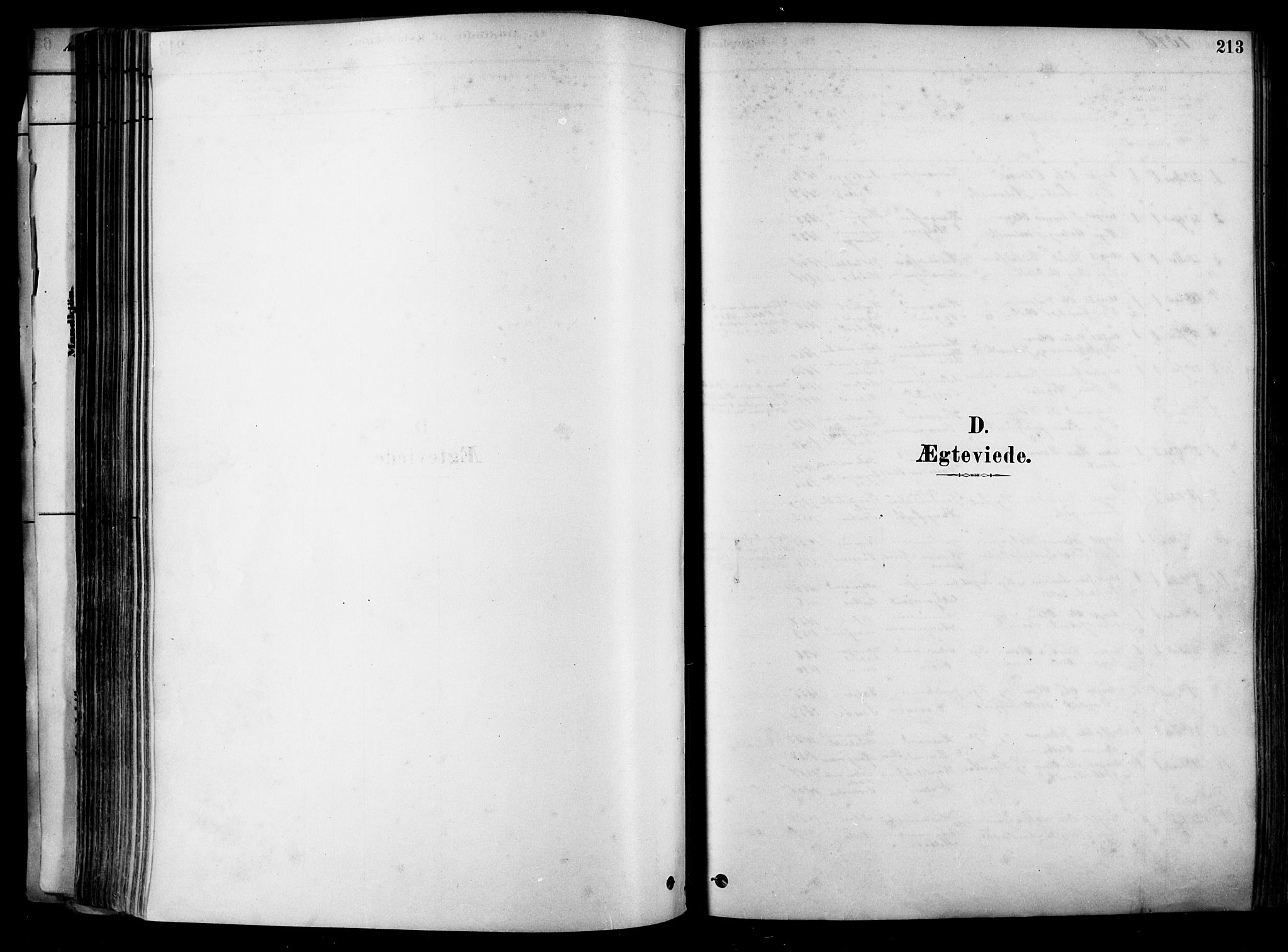 SAKO, Heddal kirkebøker, F/Fa/L0008: Ministerialbok nr. I 8, 1878-1903, s. 213