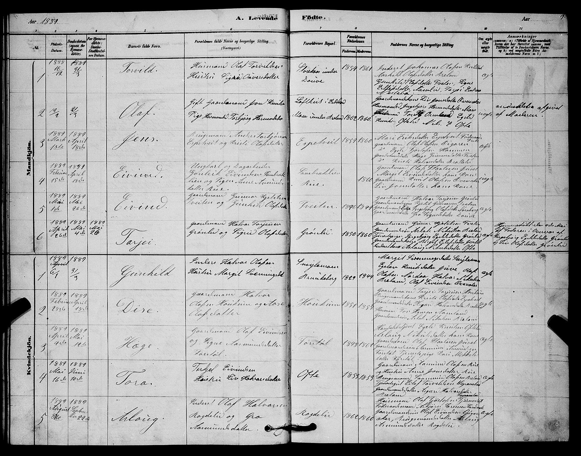 SAKO, Lårdal kirkebøker, G/Gc/L0003: Klokkerbok nr. III 3, 1878-1890, s. 19