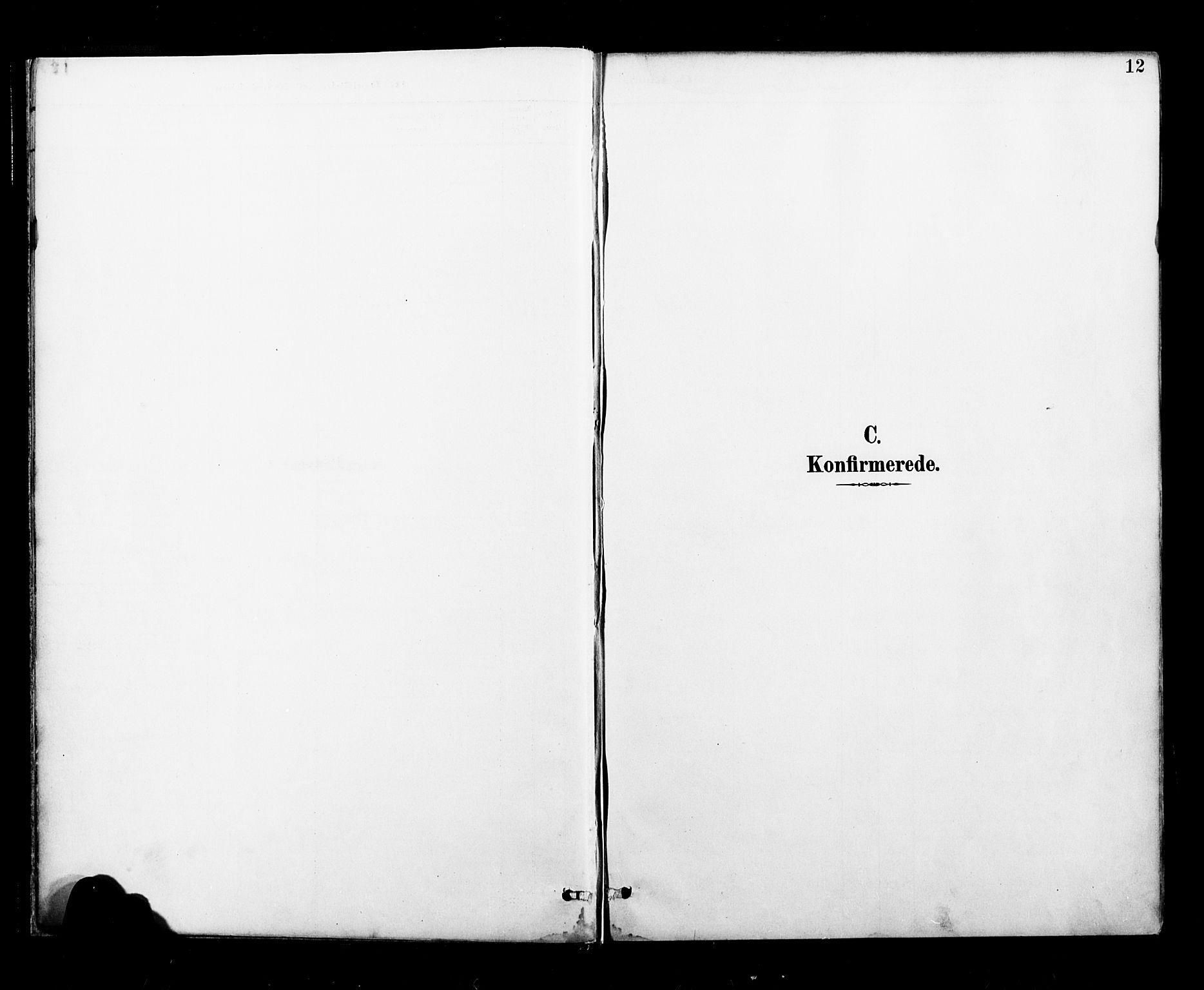 SAT, Ministerialprotokoller, klokkerbøker og fødselsregistre - Nordland, 827/L0401: Ministerialbok nr. 827A13, 1887-1905, s. 12