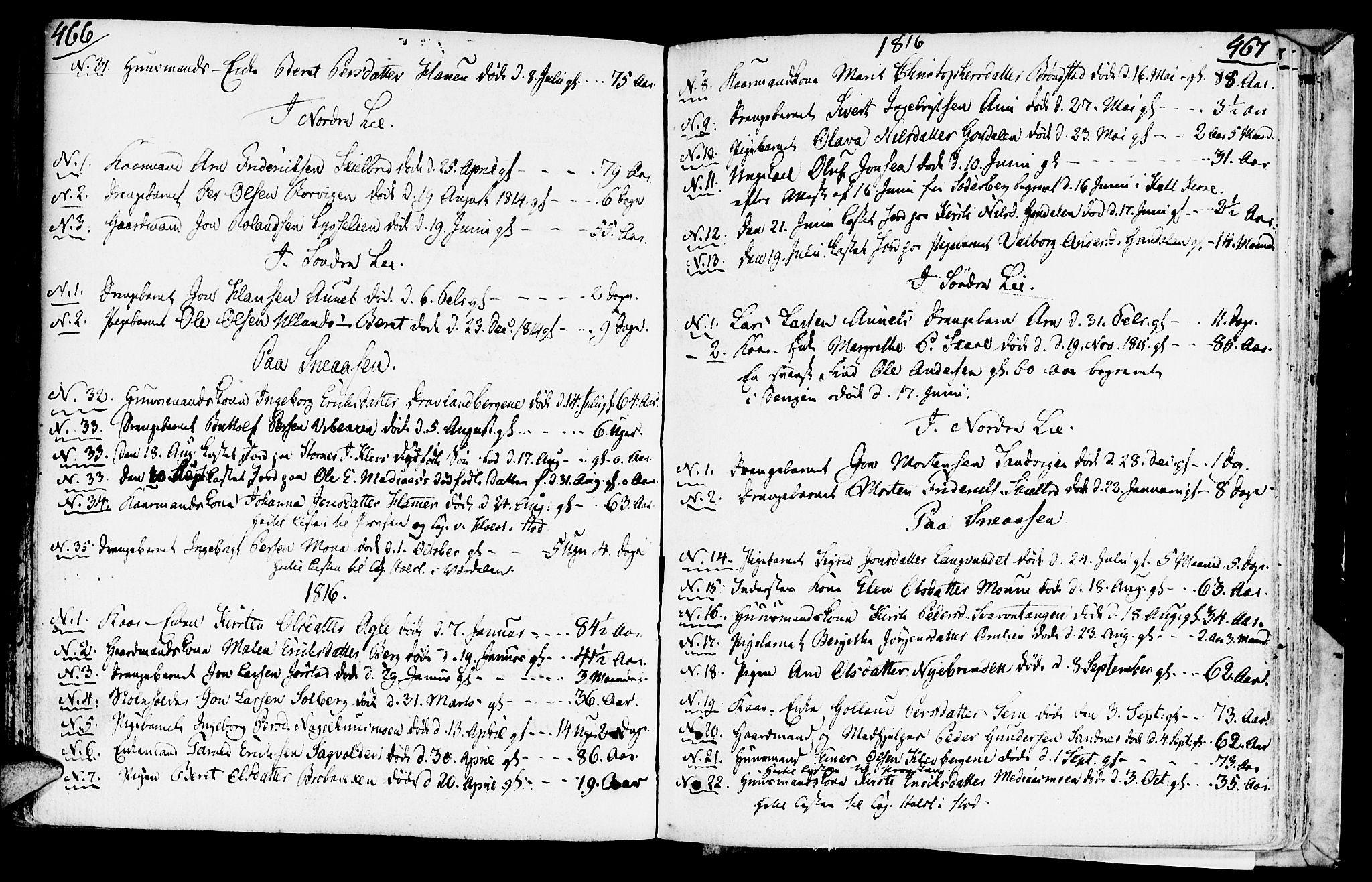 SAT, Ministerialprotokoller, klokkerbøker og fødselsregistre - Nord-Trøndelag, 749/L0468: Ministerialbok nr. 749A02, 1787-1817, s. 466-467