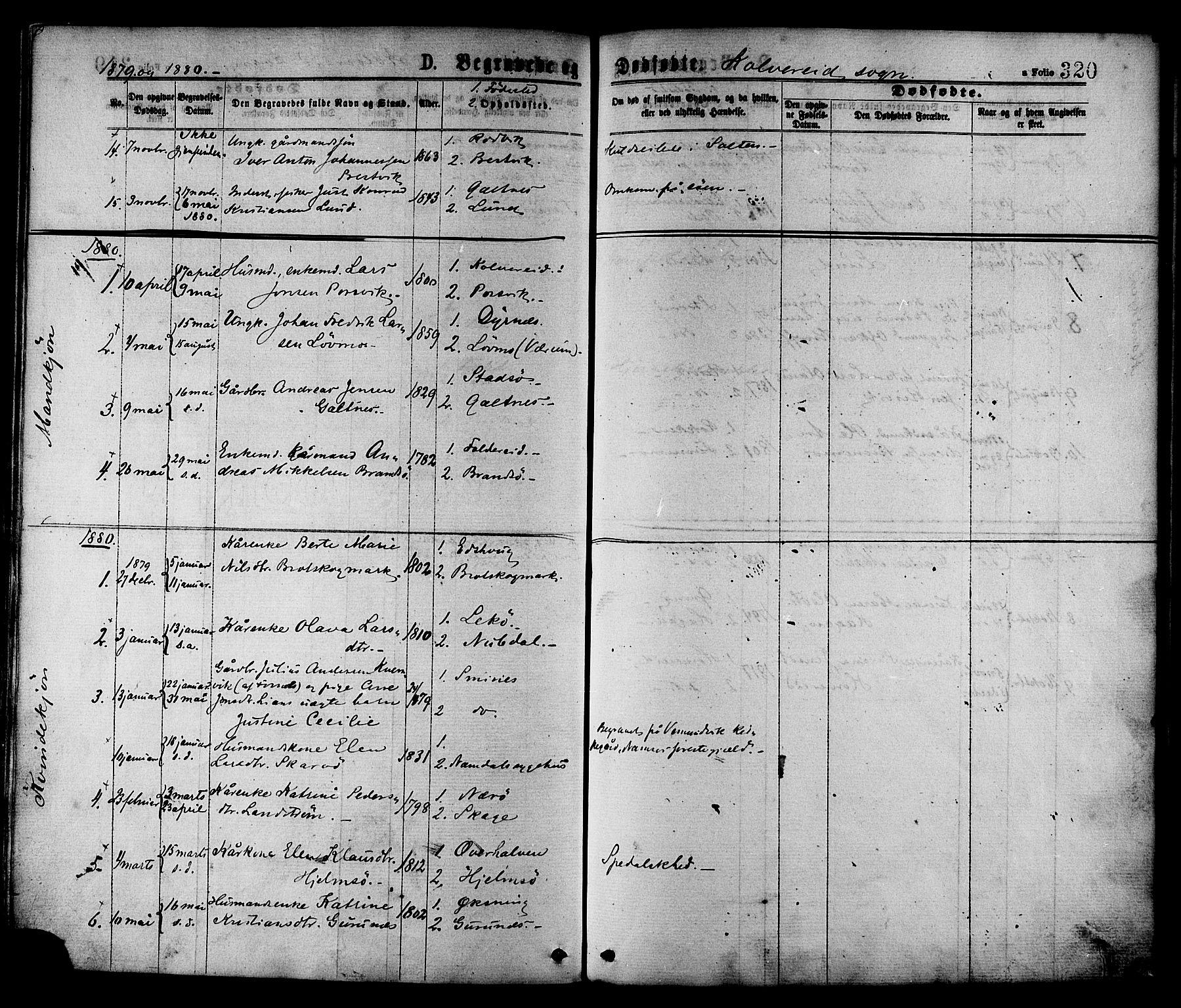 SAT, Ministerialprotokoller, klokkerbøker og fødselsregistre - Nord-Trøndelag, 780/L0642: Ministerialbok nr. 780A07 /1, 1874-1885, s. 320