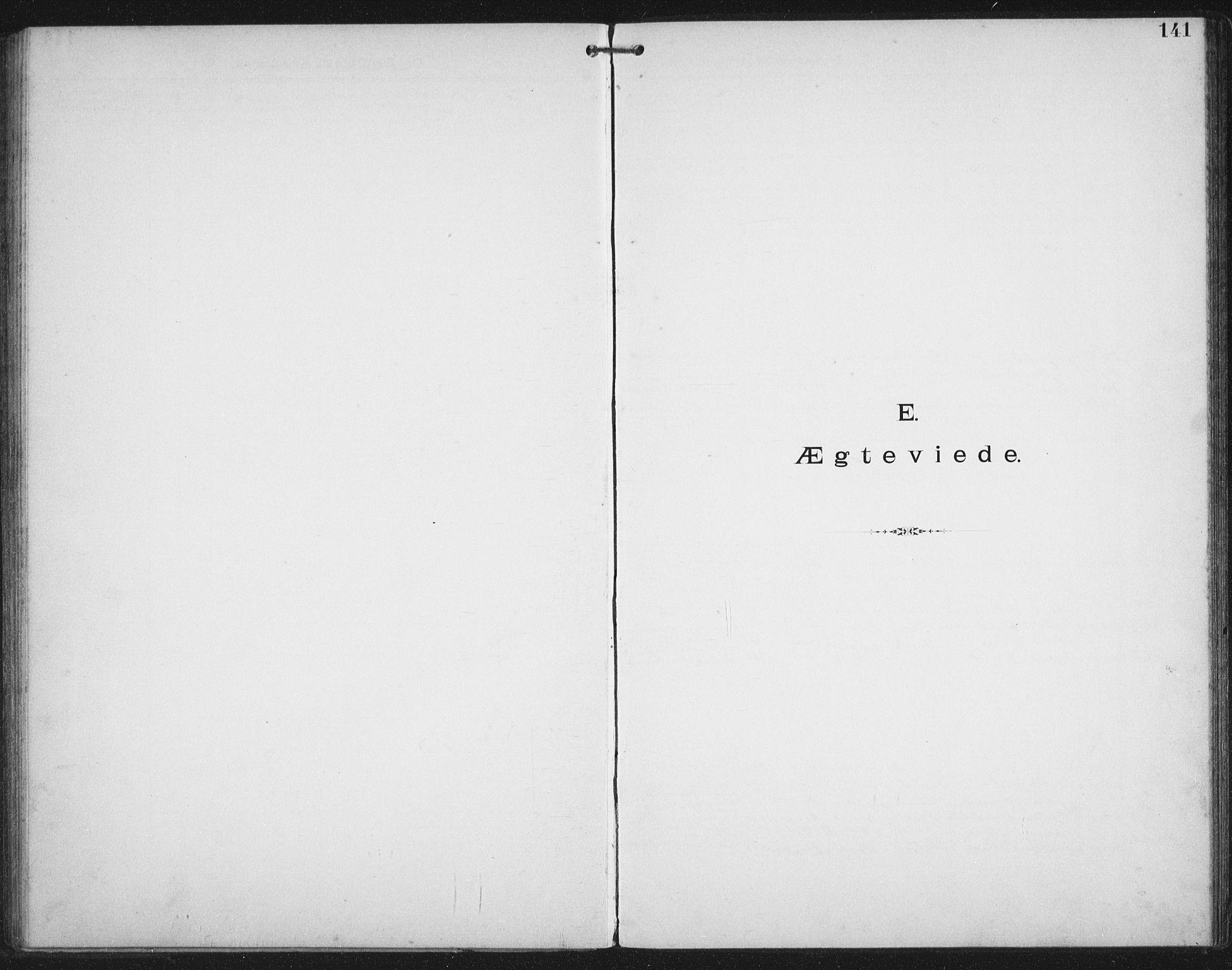 SAT, Ministerialprotokoller, klokkerbøker og fødselsregistre - Nordland, 881/L1174: Dissenterprotokoll nr. 881D01, 1891-1933, s. 141