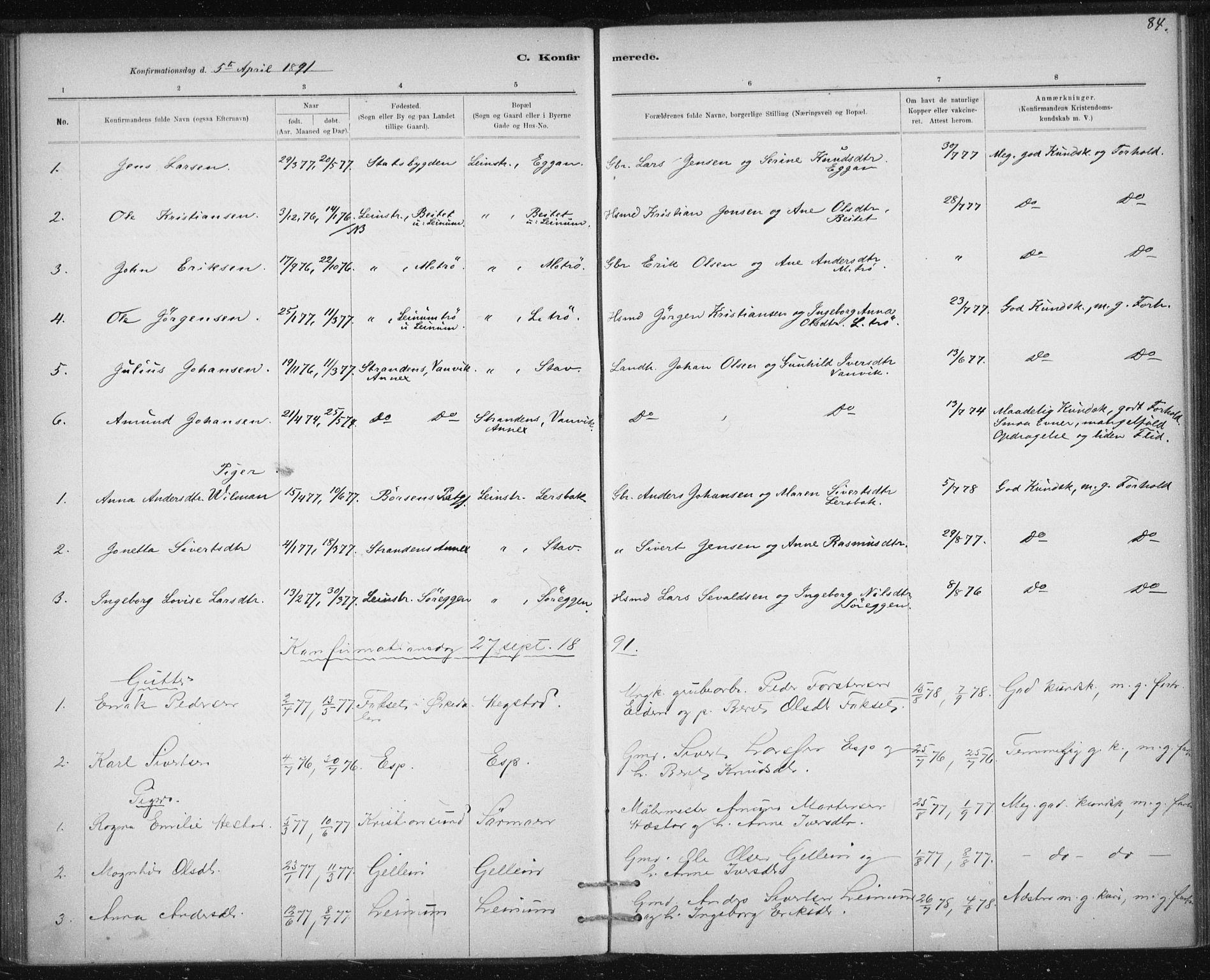 SAT, Ministerialprotokoller, klokkerbøker og fødselsregistre - Sør-Trøndelag, 613/L0392: Ministerialbok nr. 613A01, 1887-1906, s. 84