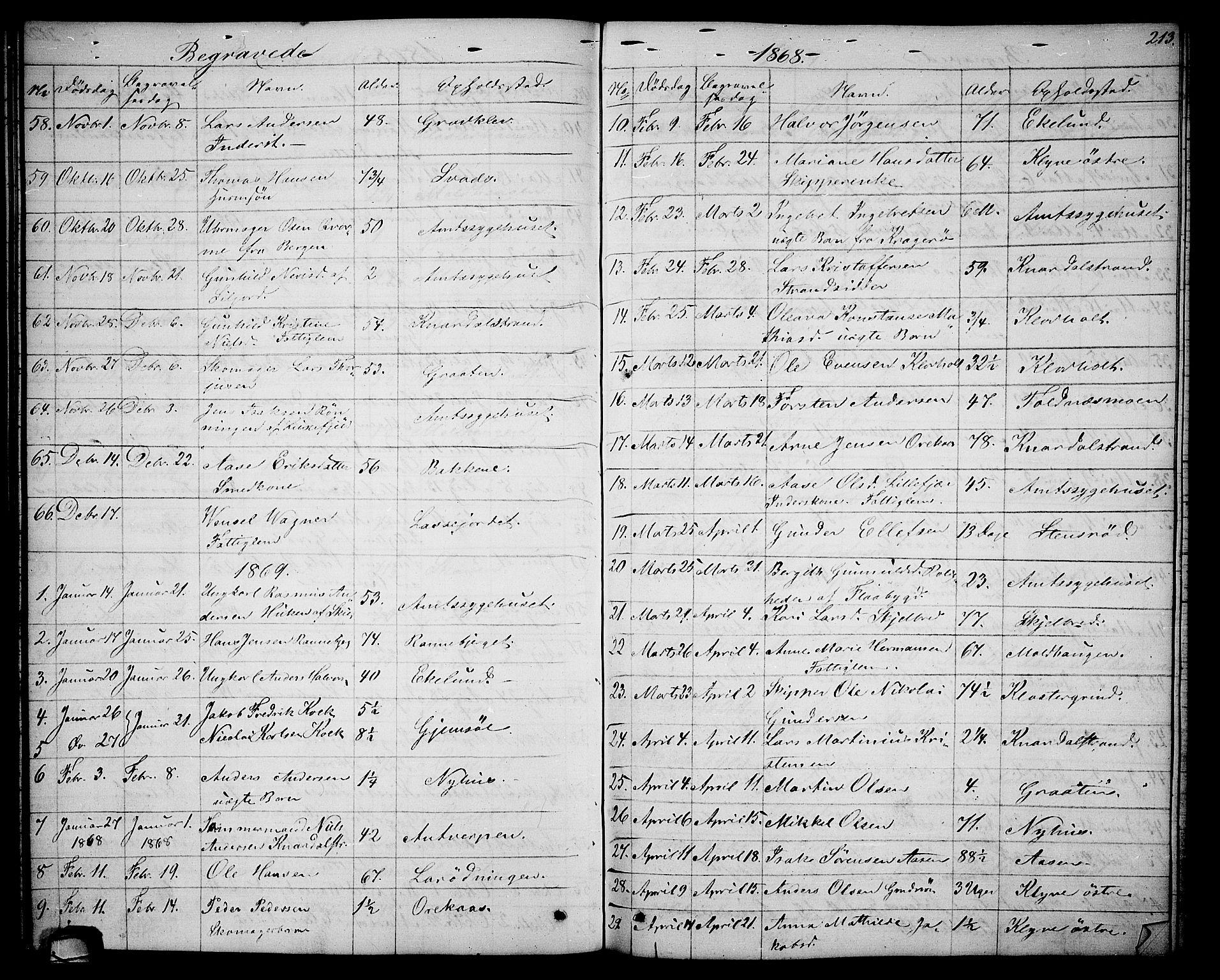 SAKO, Solum kirkebøker, G/Ga/L0004: Klokkerbok nr. I 4, 1859-1876, s. 213