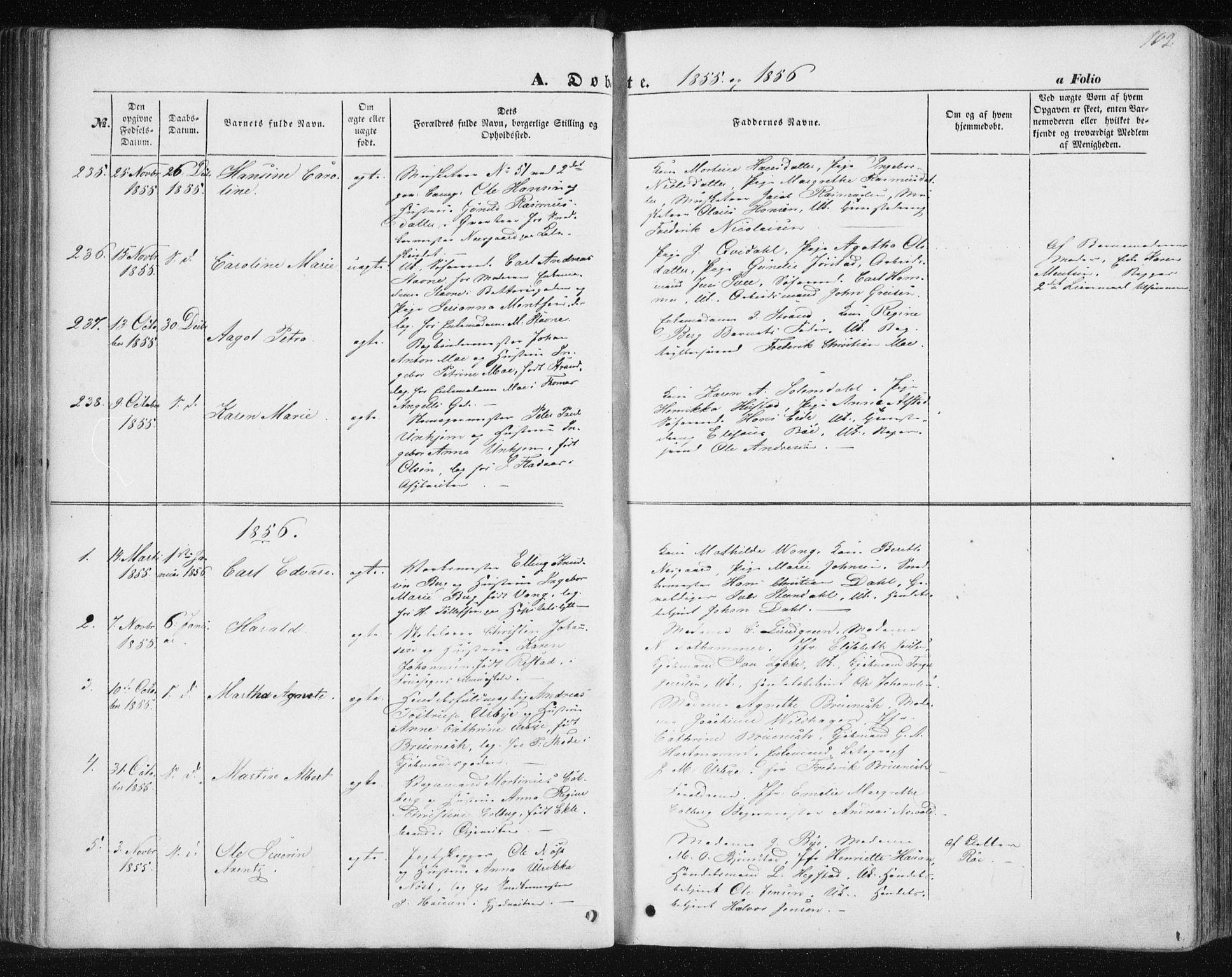 SAT, Ministerialprotokoller, klokkerbøker og fødselsregistre - Sør-Trøndelag, 602/L0112: Ministerialbok nr. 602A10, 1848-1859, s. 102