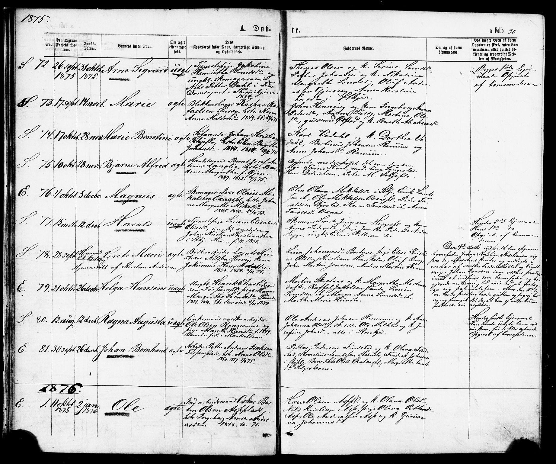 SAT, Ministerialprotokoller, klokkerbøker og fødselsregistre - Nord-Trøndelag, 739/L0370: Ministerialbok nr. 739A02, 1868-1881, s. 30