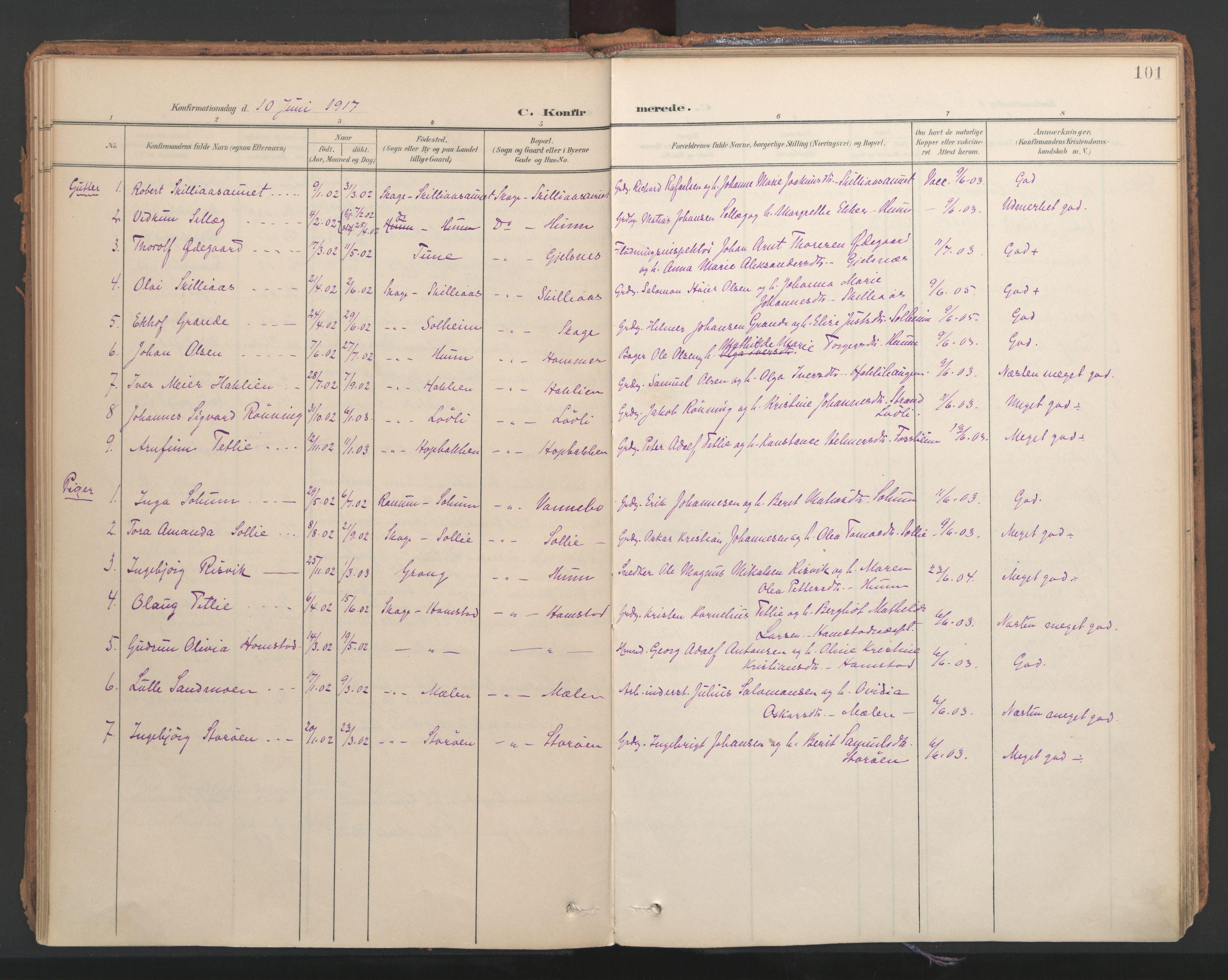 SAT, Ministerialprotokoller, klokkerbøker og fødselsregistre - Nord-Trøndelag, 766/L0564: Ministerialbok nr. 767A02, 1900-1932, s. 101