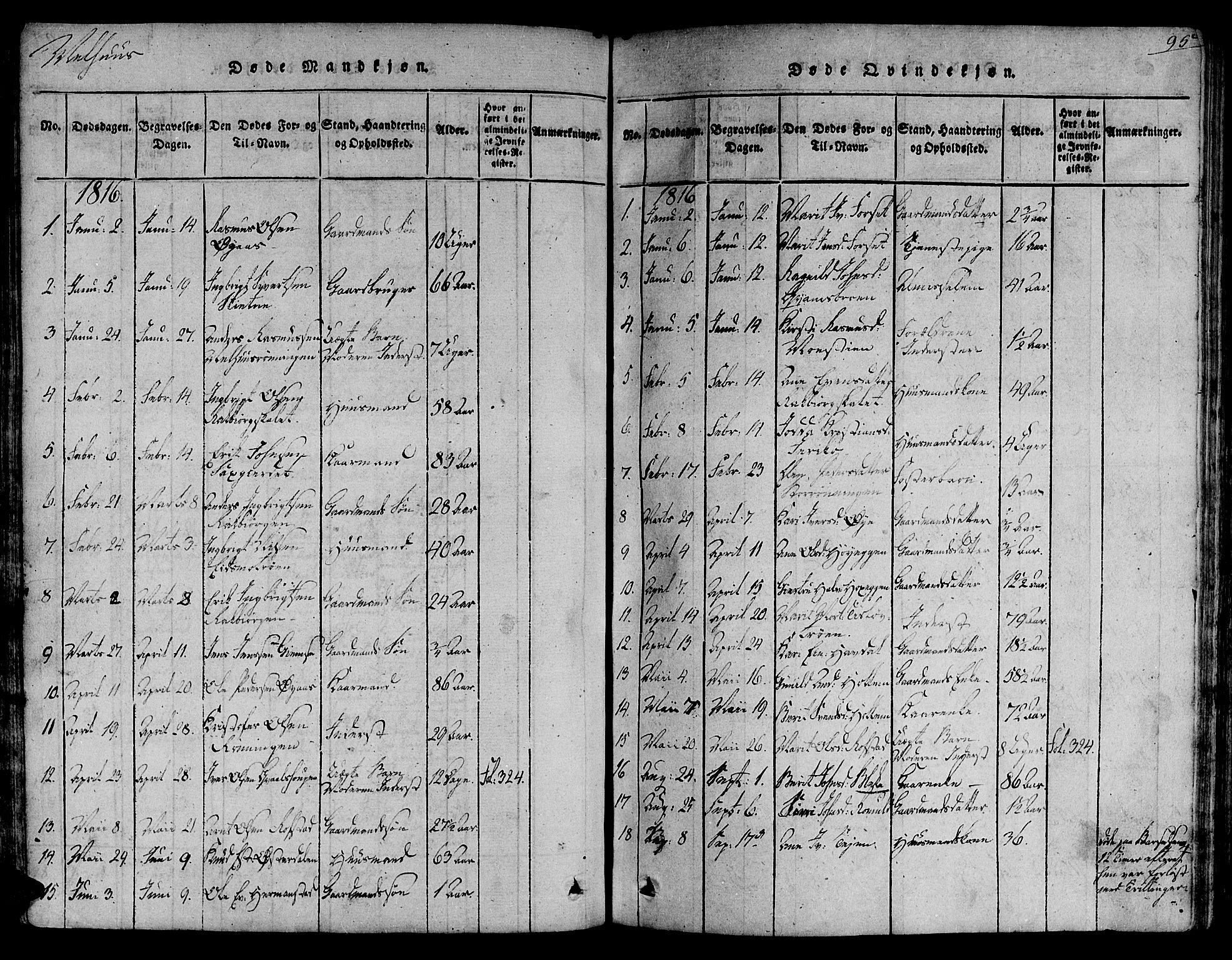 SAT, Ministerialprotokoller, klokkerbøker og fødselsregistre - Sør-Trøndelag, 691/L1065: Ministerialbok nr. 691A03 /1, 1816-1826, s. 95