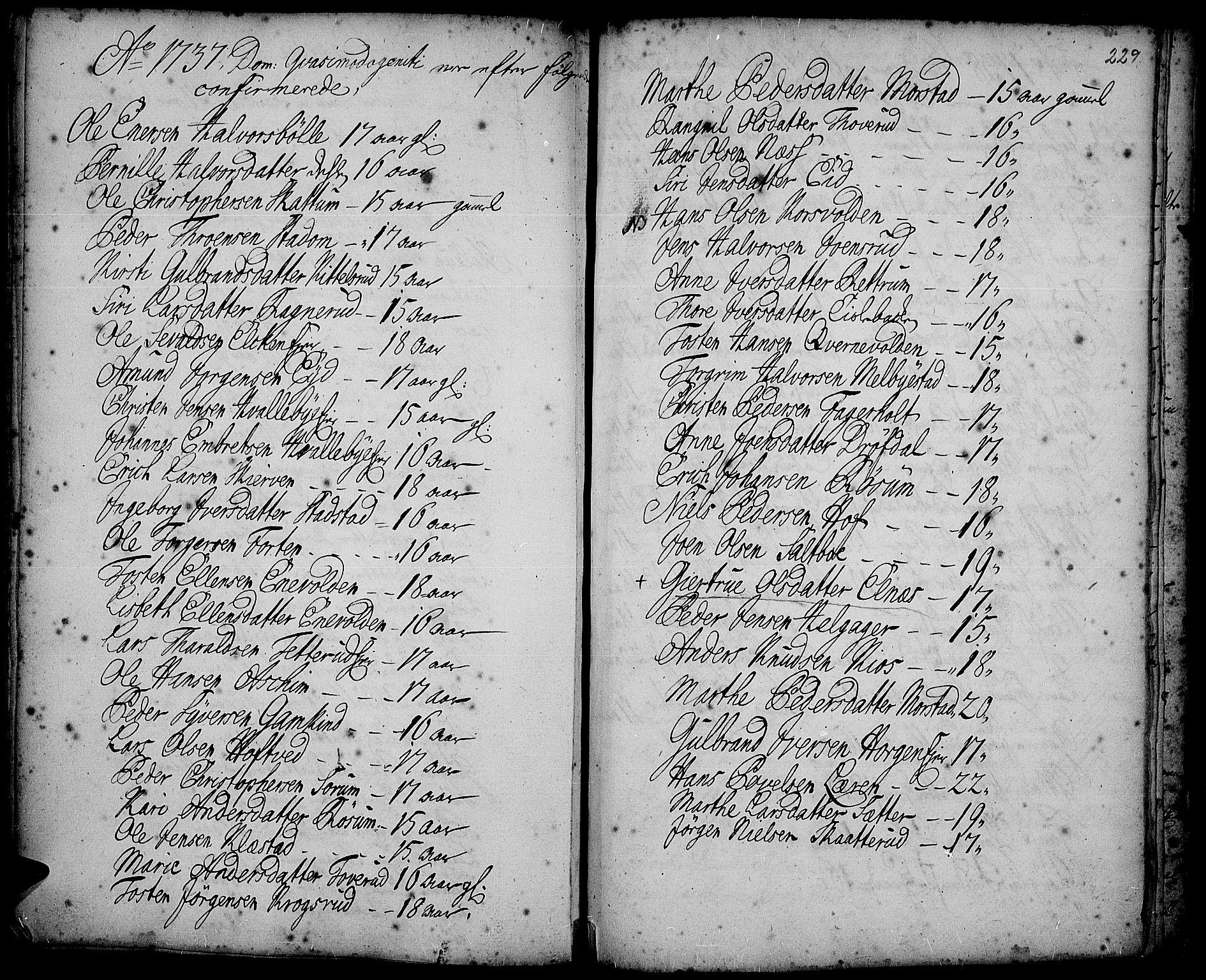 SAH, Gran prestekontor, Ministerialbok nr. 2, 1732-1744, s. 229