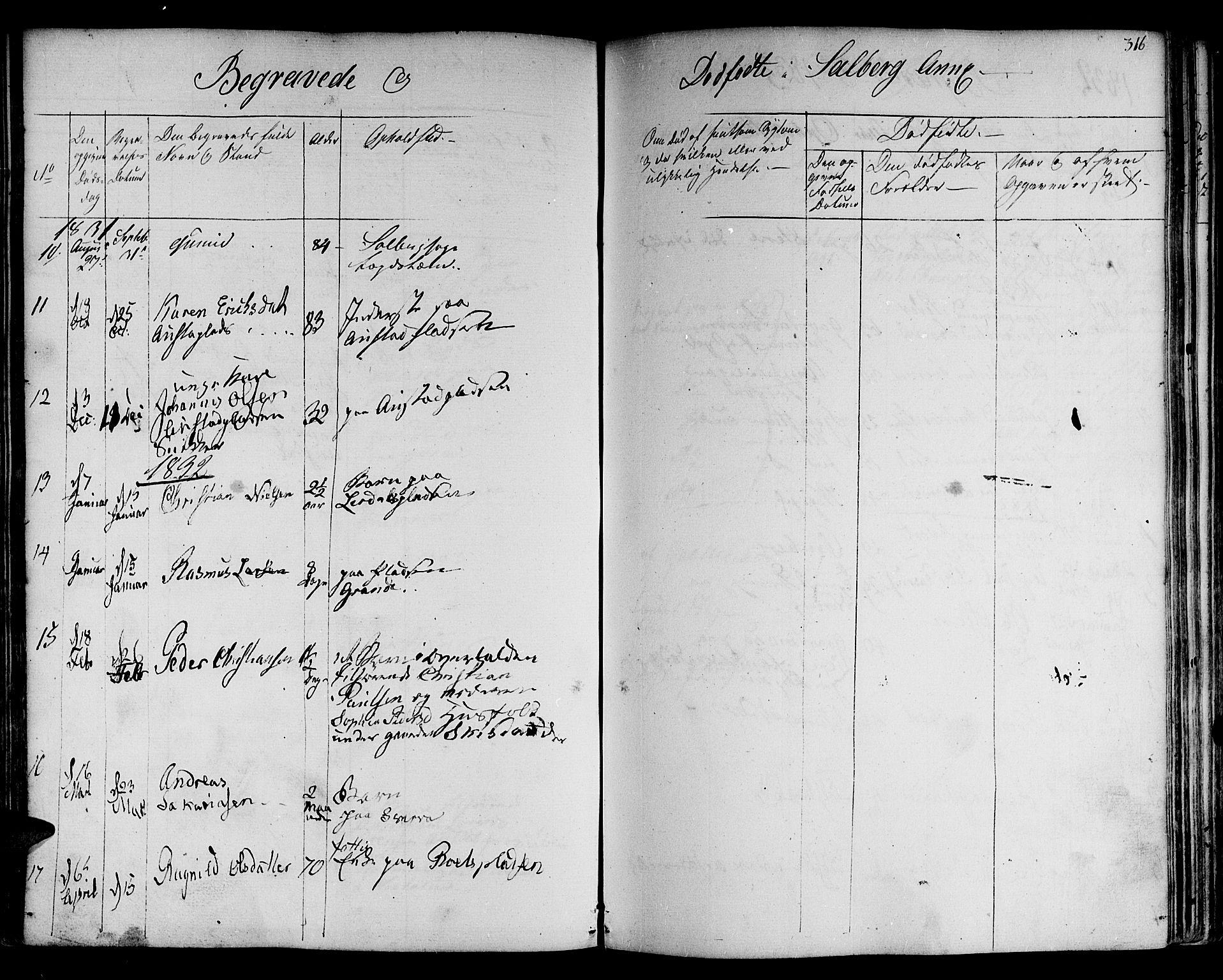 SAT, Ministerialprotokoller, klokkerbøker og fødselsregistre - Nord-Trøndelag, 730/L0277: Ministerialbok nr. 730A06 /2, 1831-1839, s. 316