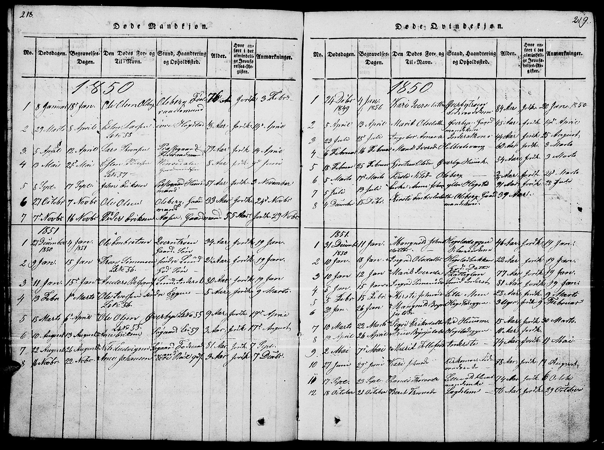 SAH, Tynset prestekontor, Klokkerbok nr. 4, 1814-1879, s. 218-219