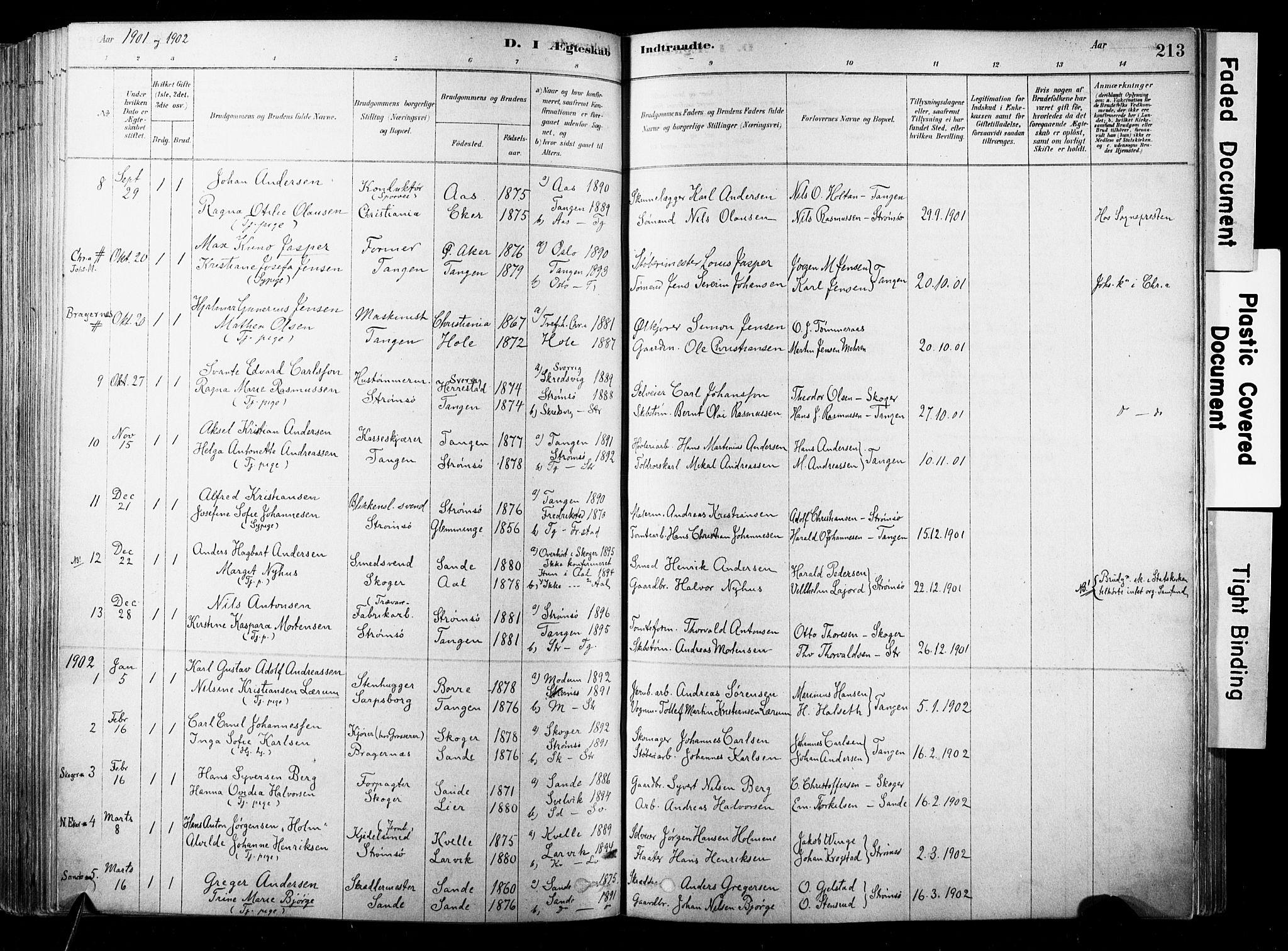 SAKO, Strømsø kirkebøker, F/Fb/L0006: Ministerialbok nr. II 6, 1879-1910, s. 213