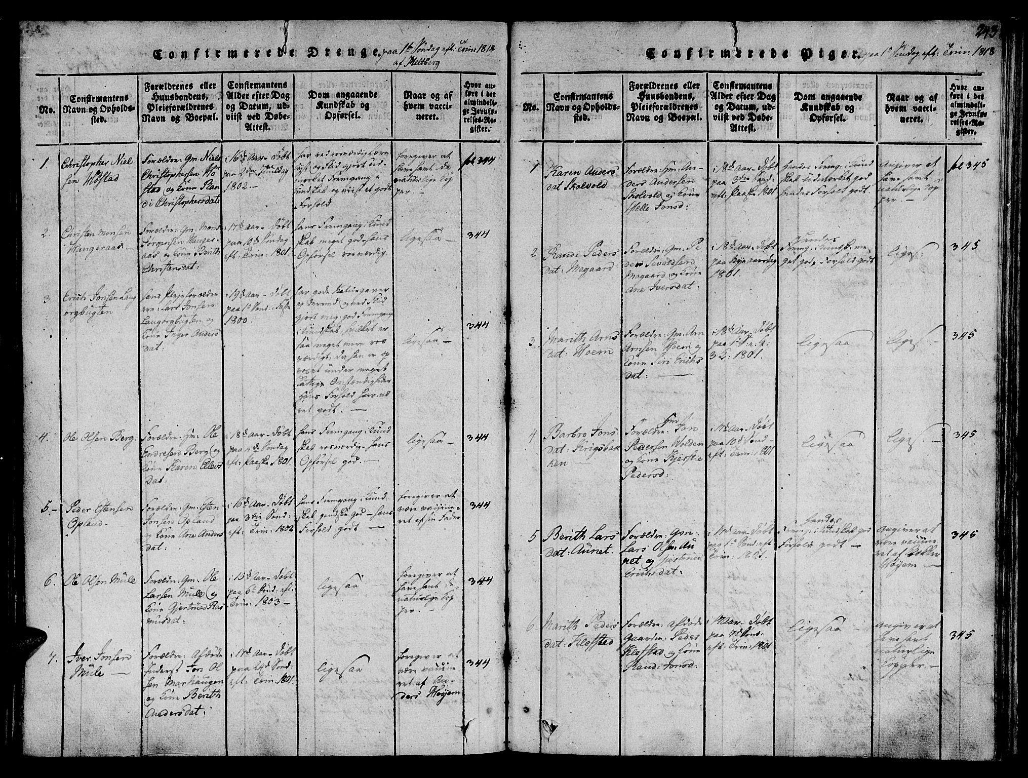 SAT, Ministerialprotokoller, klokkerbøker og fødselsregistre - Sør-Trøndelag, 612/L0372: Ministerialbok nr. 612A06 /1, 1816-1828, s. 243