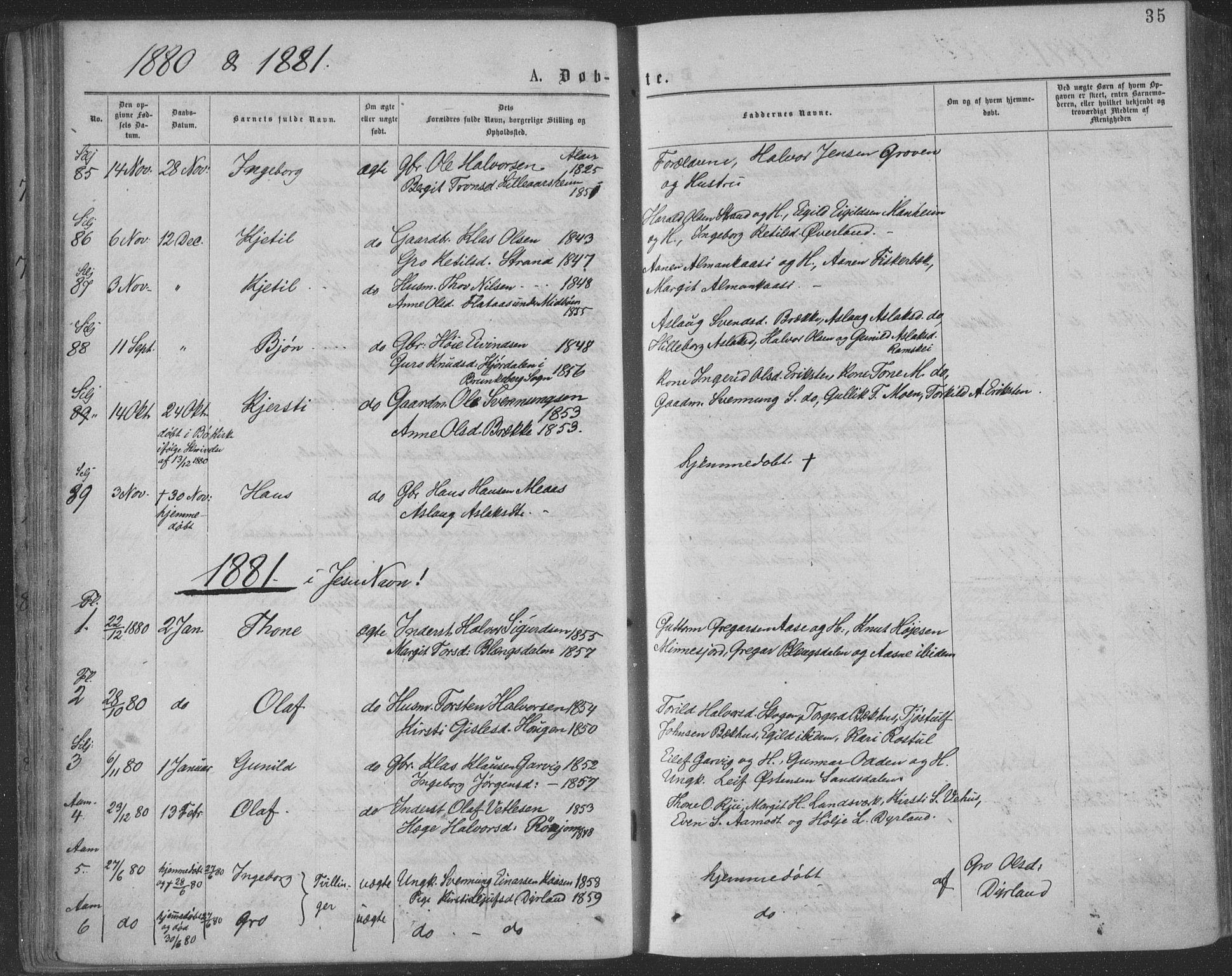 SAKO, Seljord kirkebøker, F/Fa/L0014: Ministerialbok nr. I 14, 1877-1886, s. 35