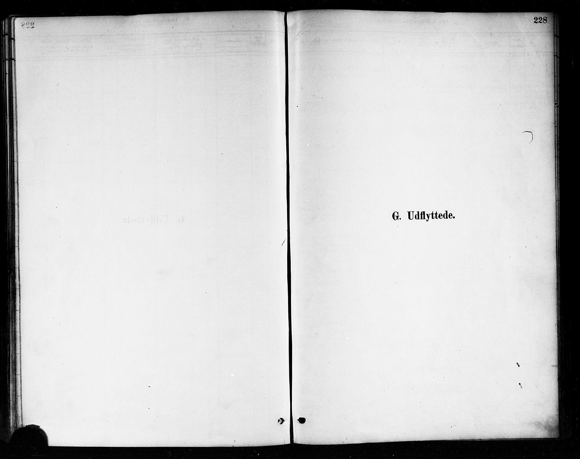 SAO, Askim prestekontor Kirkebøker, F/Fa/L0007: Ministerialbok nr. 7, 1882-1897, s. 228