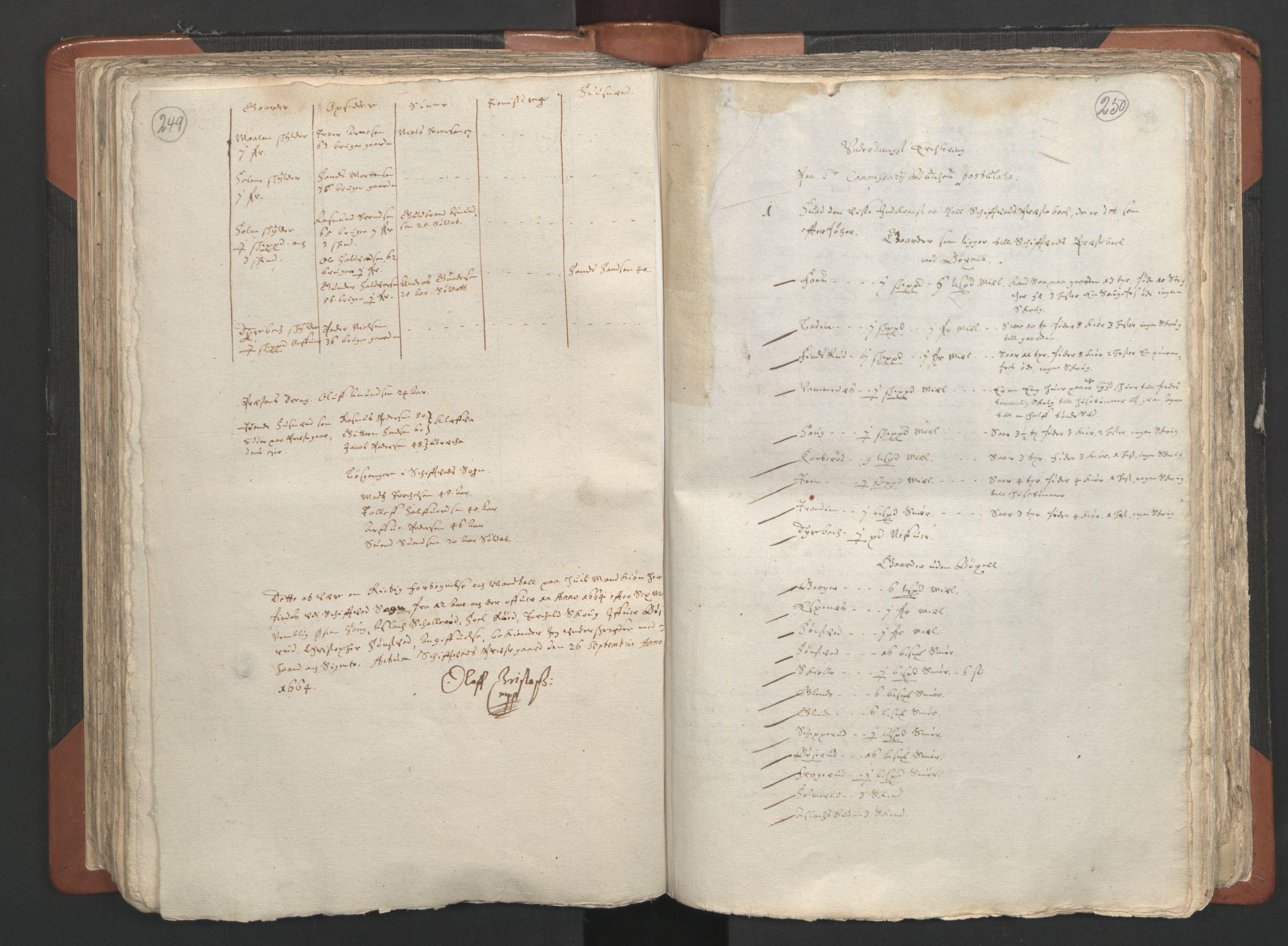 RA, Sogneprestenes manntall 1664-1666, nr. 2: Øvre Borgesyssel prosti, 1664-1666, s. 249-250