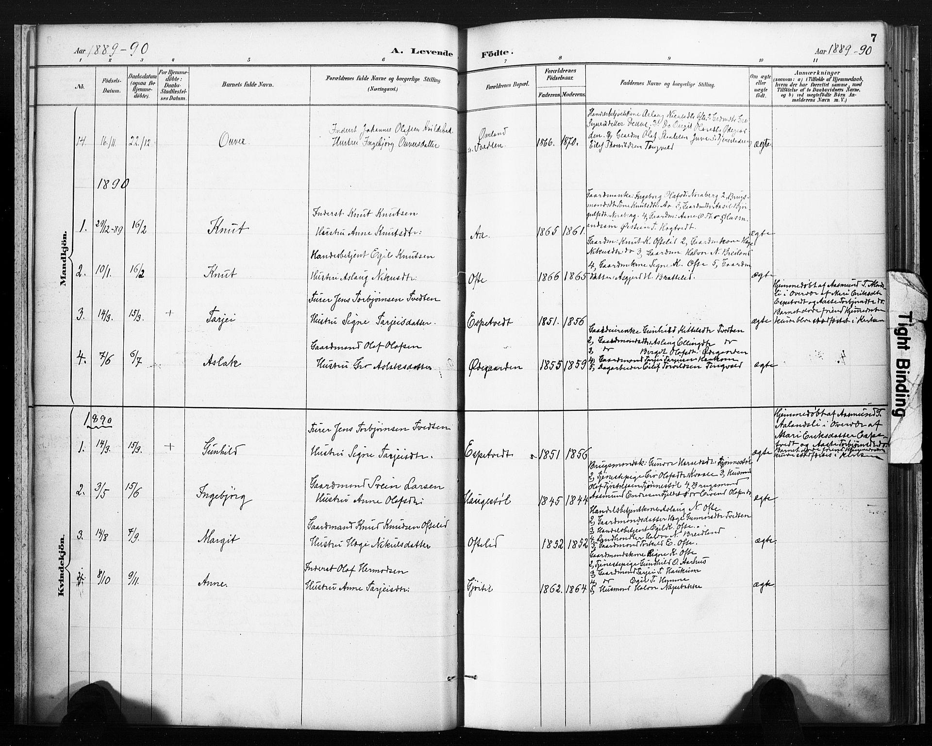 SAKO, Lårdal kirkebøker, F/Fc/L0002: Ministerialbok nr. III 2, 1887-1906, s. 7