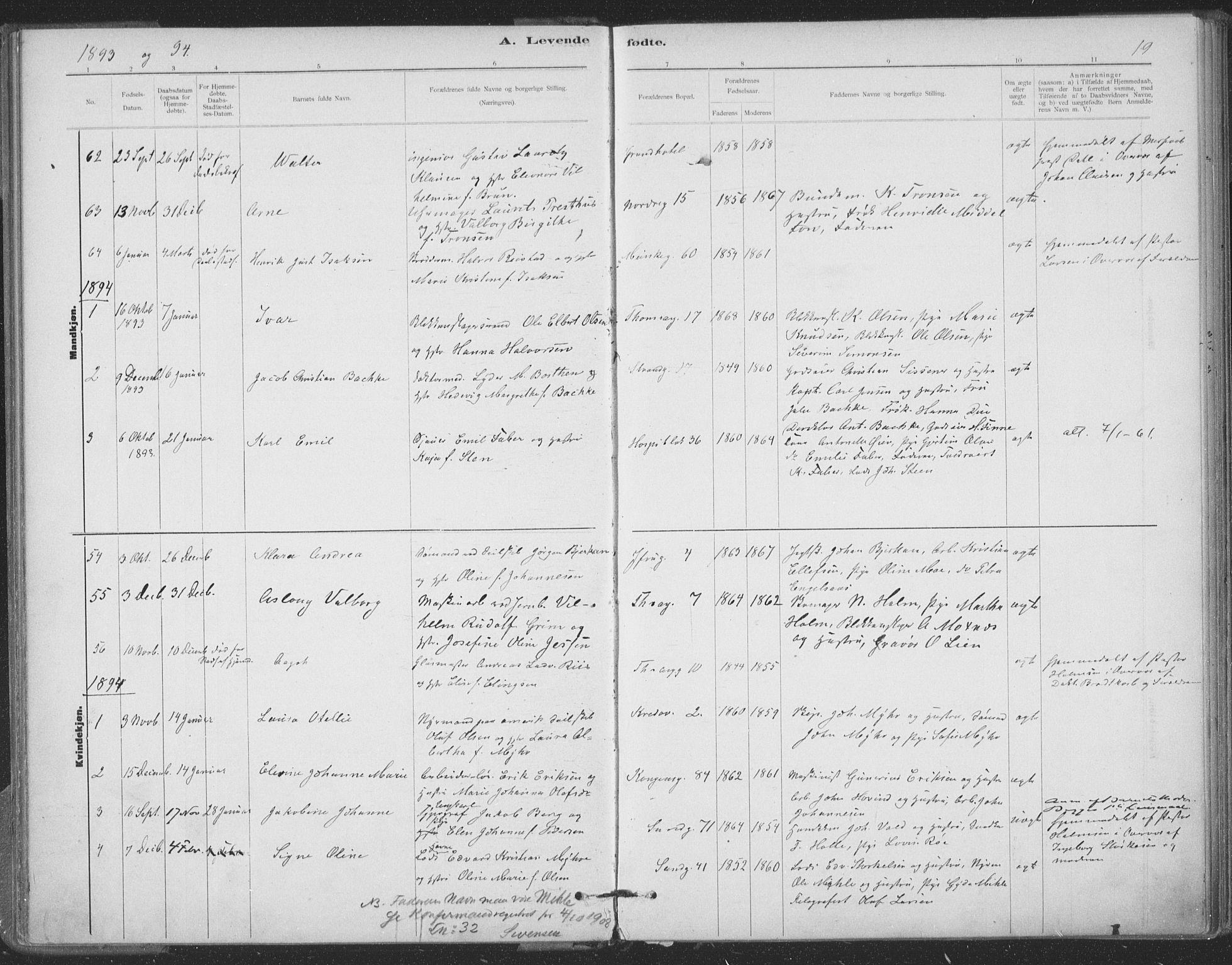 SAT, Ministerialprotokoller, klokkerbøker og fødselsregistre - Sør-Trøndelag, 602/L0122: Ministerialbok nr. 602A20, 1892-1908, s. 19