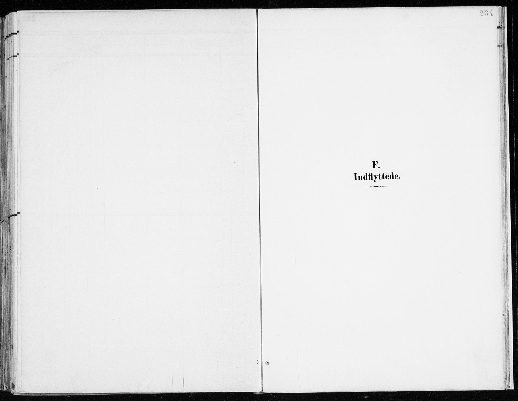 SAH, Nord-Odal prestekontor, Ministerialbok nr. 9, 1902-1926, s. 234