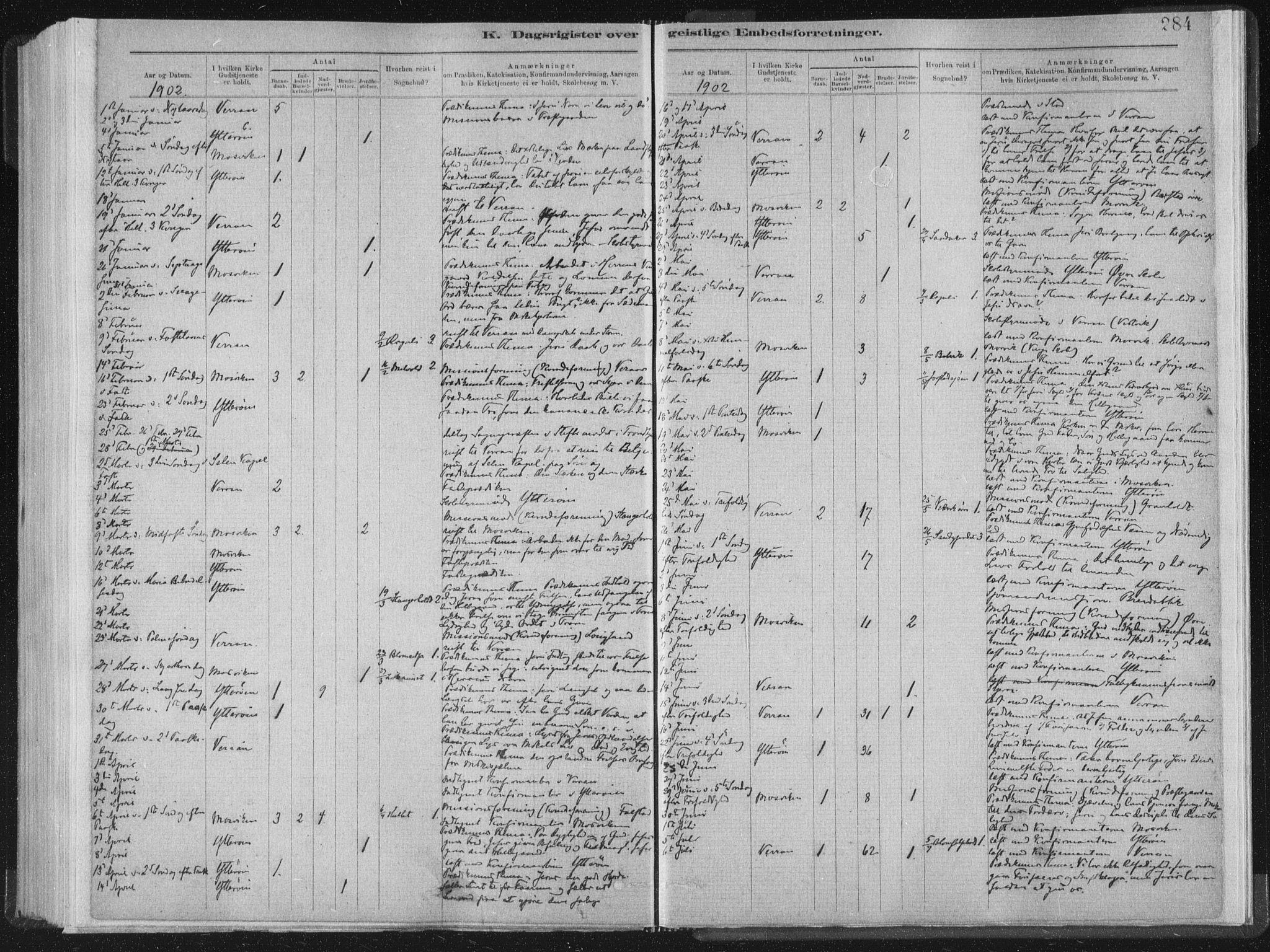 SAT, Ministerialprotokoller, klokkerbøker og fødselsregistre - Nord-Trøndelag, 722/L0220: Ministerialbok nr. 722A07, 1881-1908, s. 284