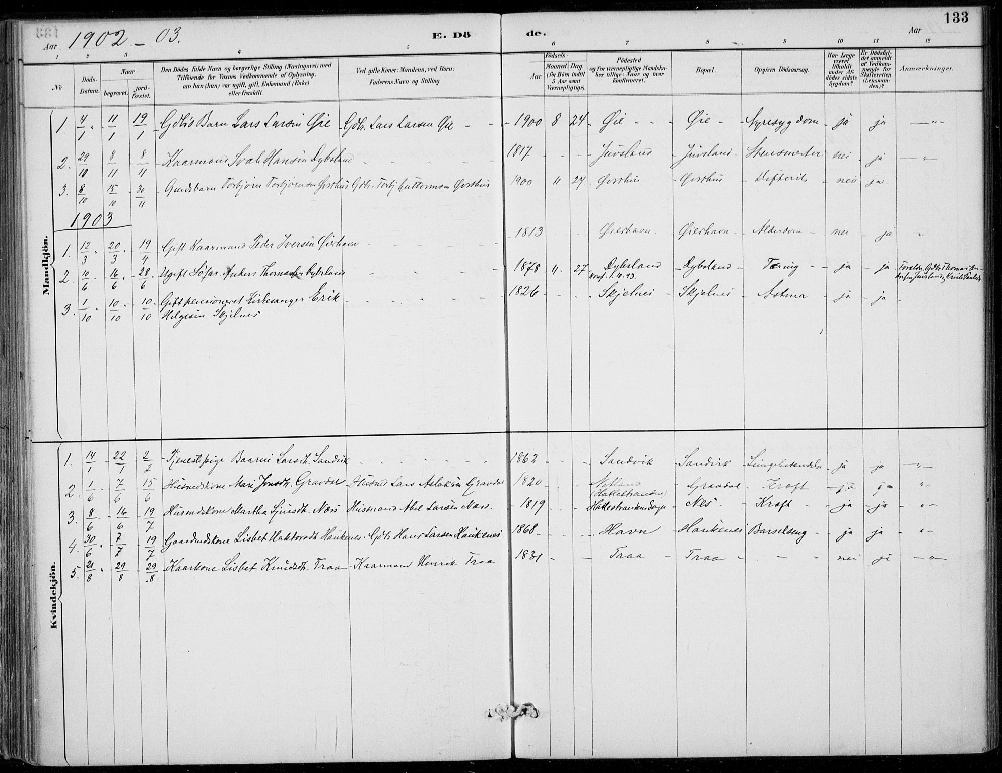 SAB, Strandebarm sokneprestembete, H/Haa: Ministerialbok nr. D  1, 1886-1912, s. 133